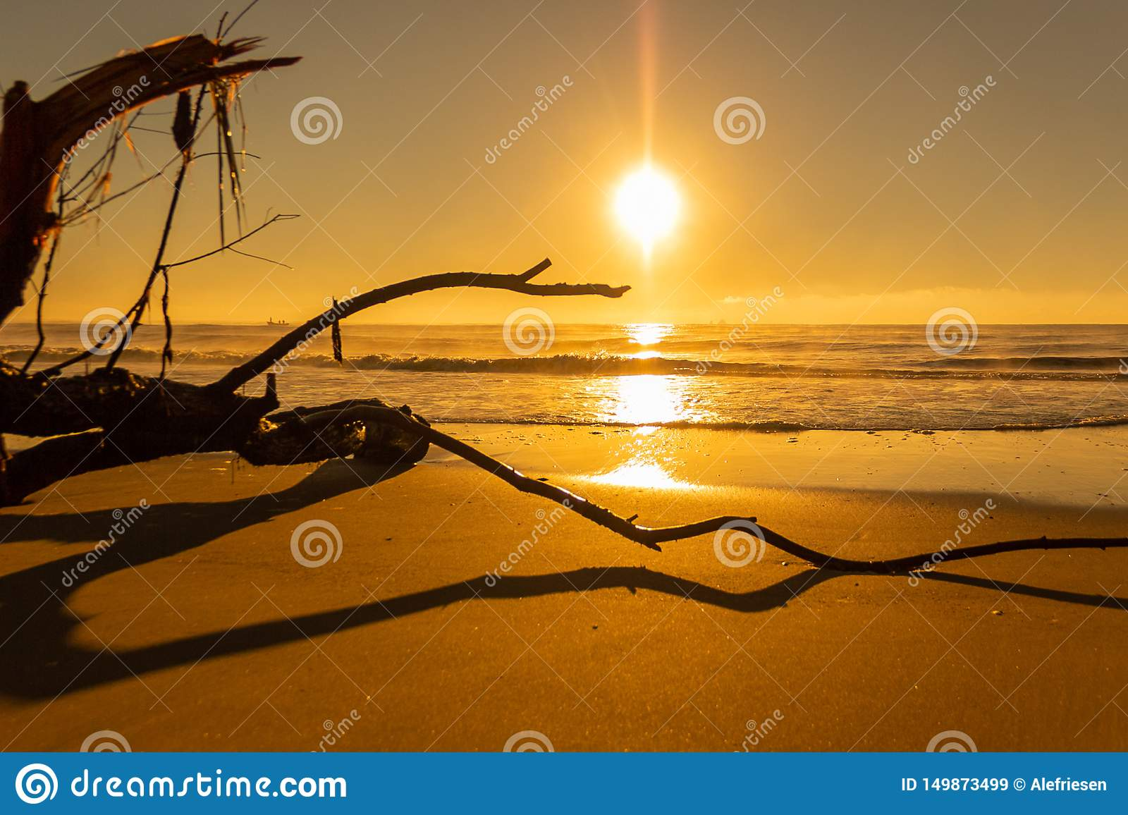 Sunrise in the Beach