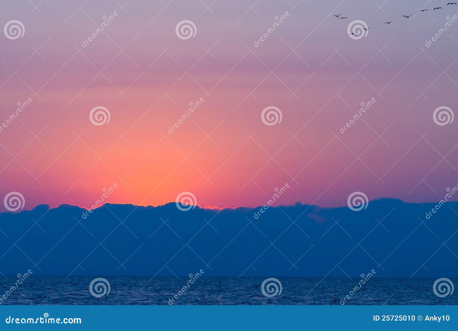 Sunrise and birds