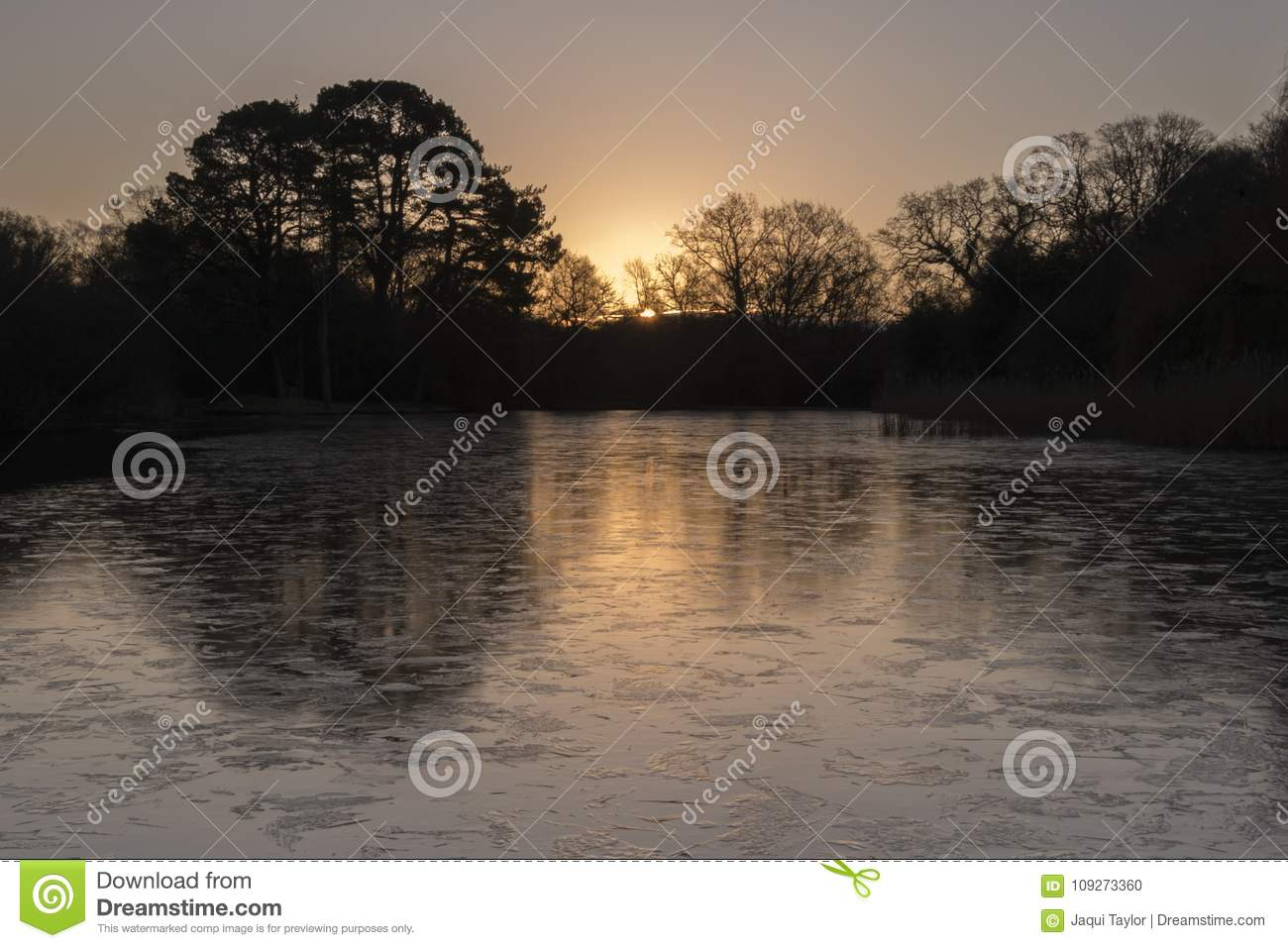 Sunrise on an icy morning at the Ornamental Pond, Southampton Common