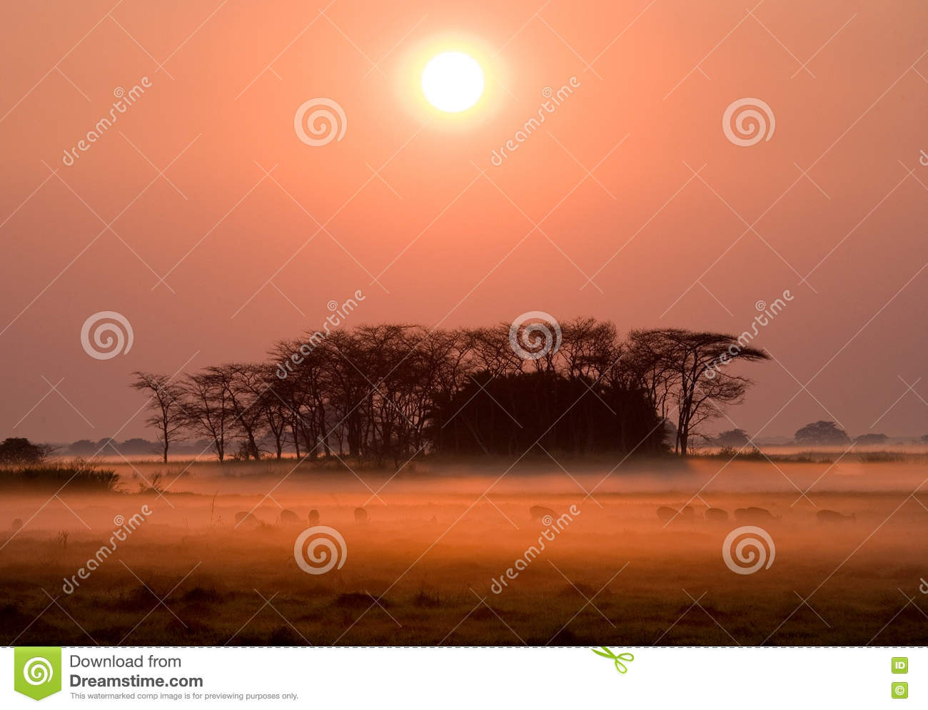 sunrise hindu singles Calculations of sunrise and sunset in new delhi – delhi – india for may 2018 generic astronomy calculator to calculate times for sunrise, sunset, moonrise, moonset for many cities, with daylight saving time and time zones taken in account.
