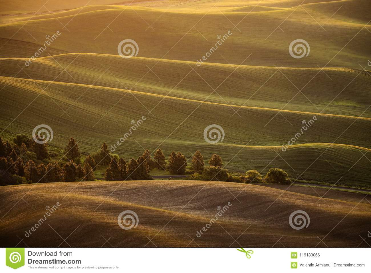 Sunrise over rolling country hills