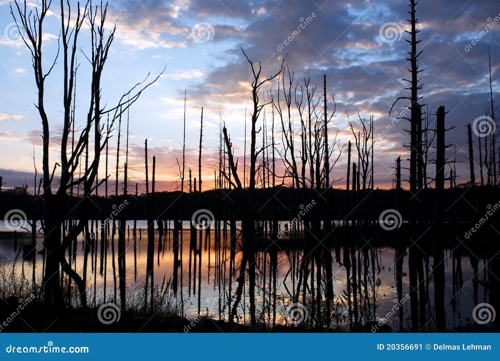 Sunrise At Shaggers Inn Dam Stock Image