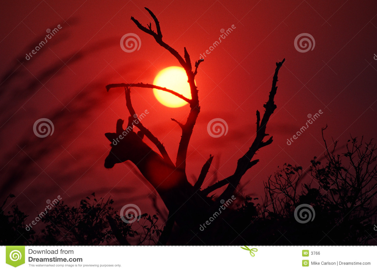 Sunset afrykańskiej