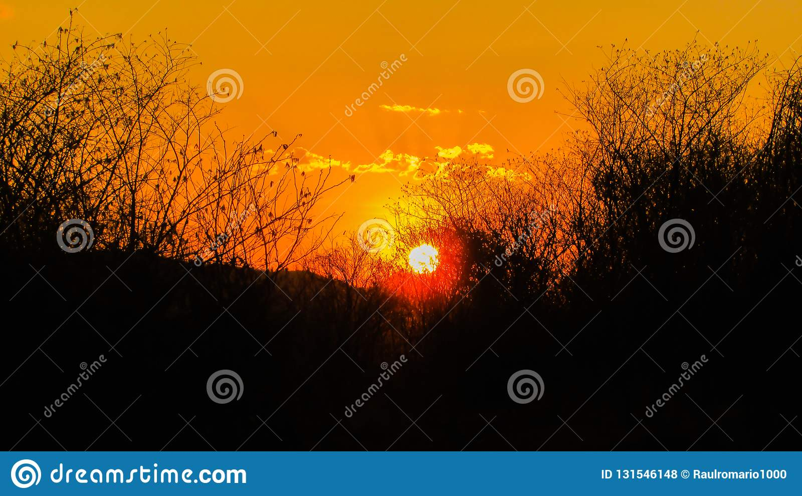 Sunset a beautiful sky orange golden clouds creating a beautiful and misteiroso scenery in the nordete of Brazil on the serrated. Biome royalty free stock photos