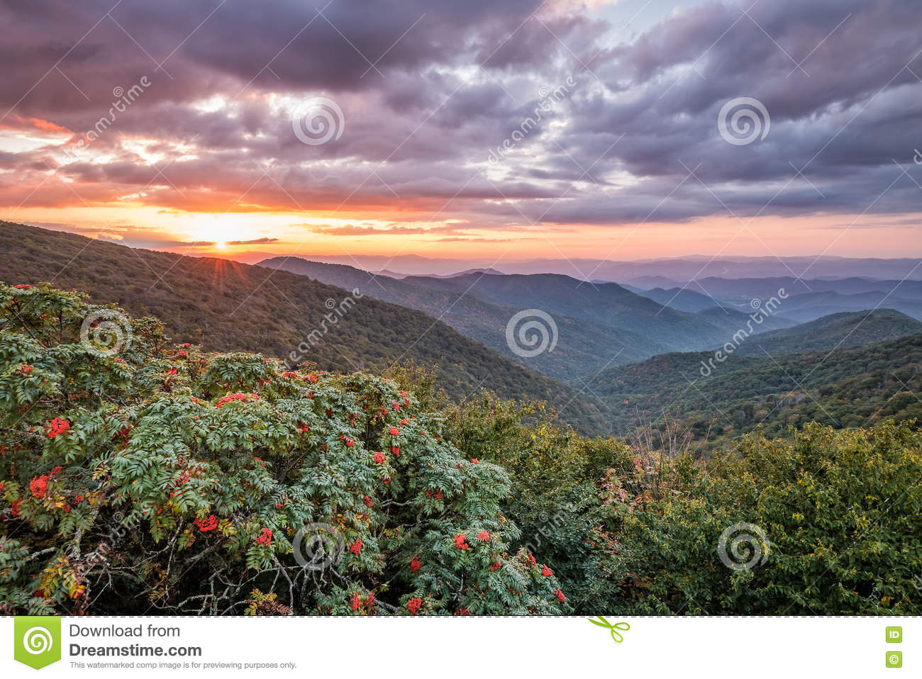 Sunset At Craggy Gardens Stock Photo Image Of Gardens 81859638