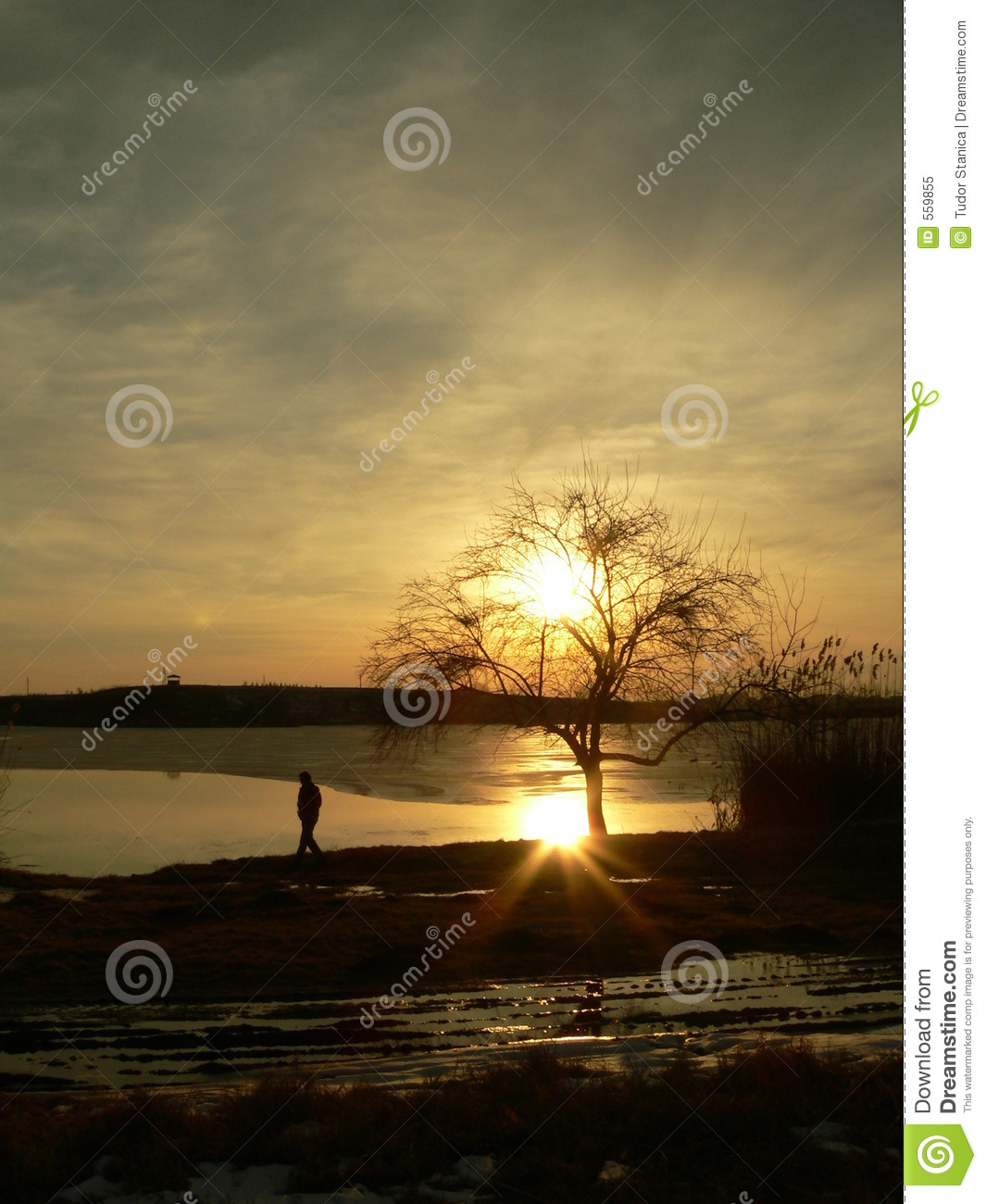 Download Sunset on a lake stock image. Image of atmosphere, yellow - 559855