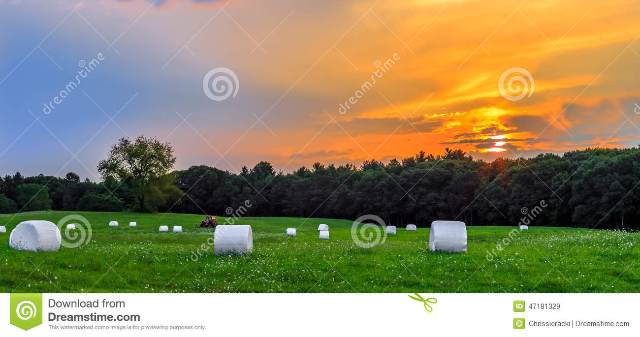 Sunset in Meadow with Hay Bales