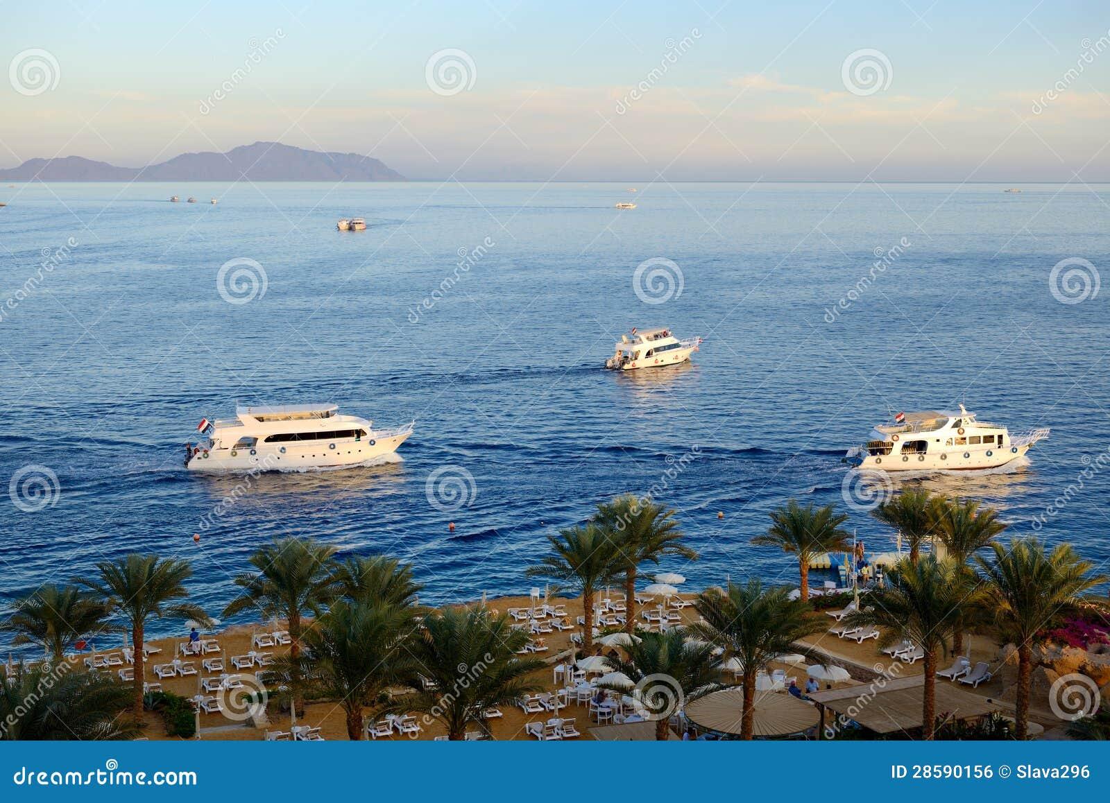Sunset at naama bay red sea and motor yachts royalty free for Blue sea motor inn