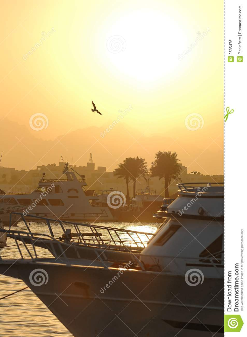 Sunset over harbor in Egypt