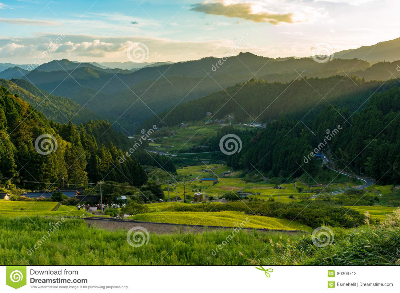 Sunset over Japanese countryside with mountains and rice fields