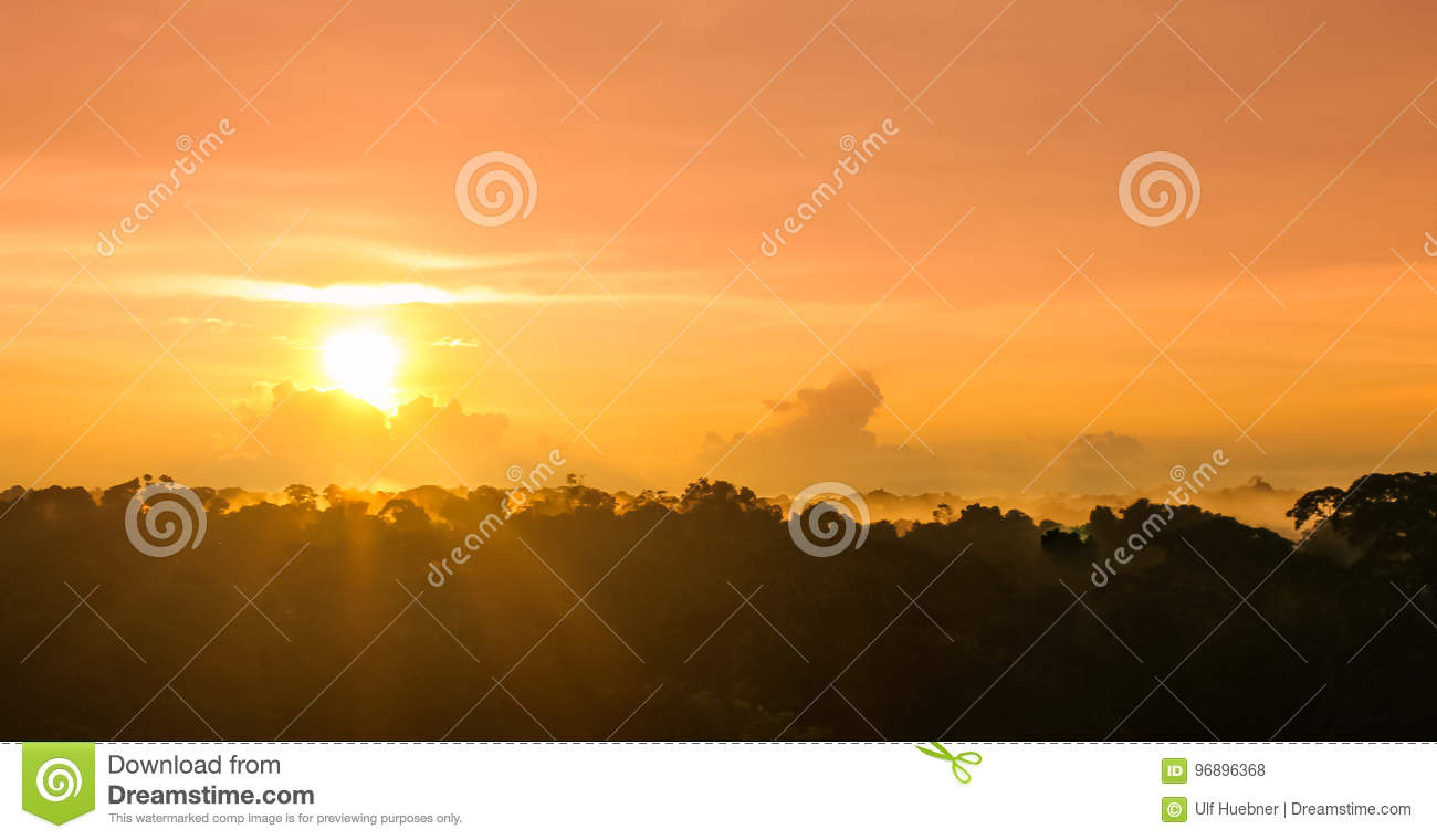 Sunset over rain forest by Amazon river in Brazil
