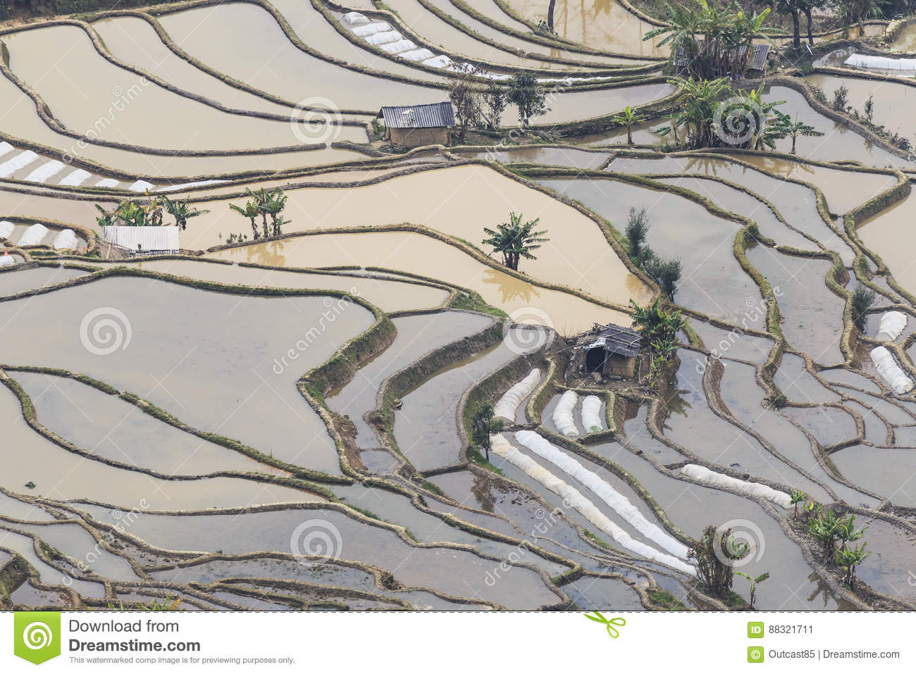 Sunset over yuanyang rice terraces in yunnan china one of the download comp gumiabroncs Image collections