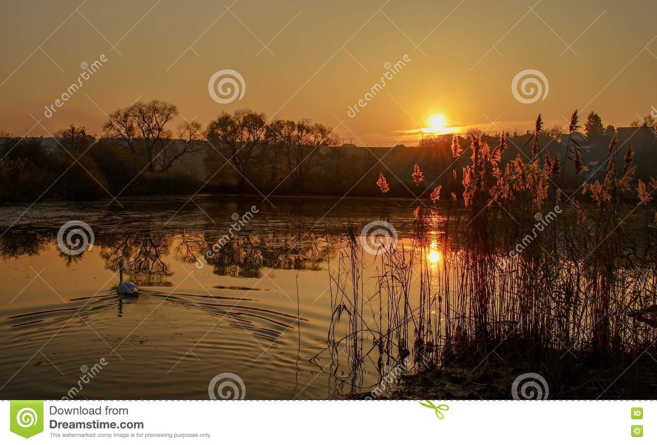 Sunset ower the pond