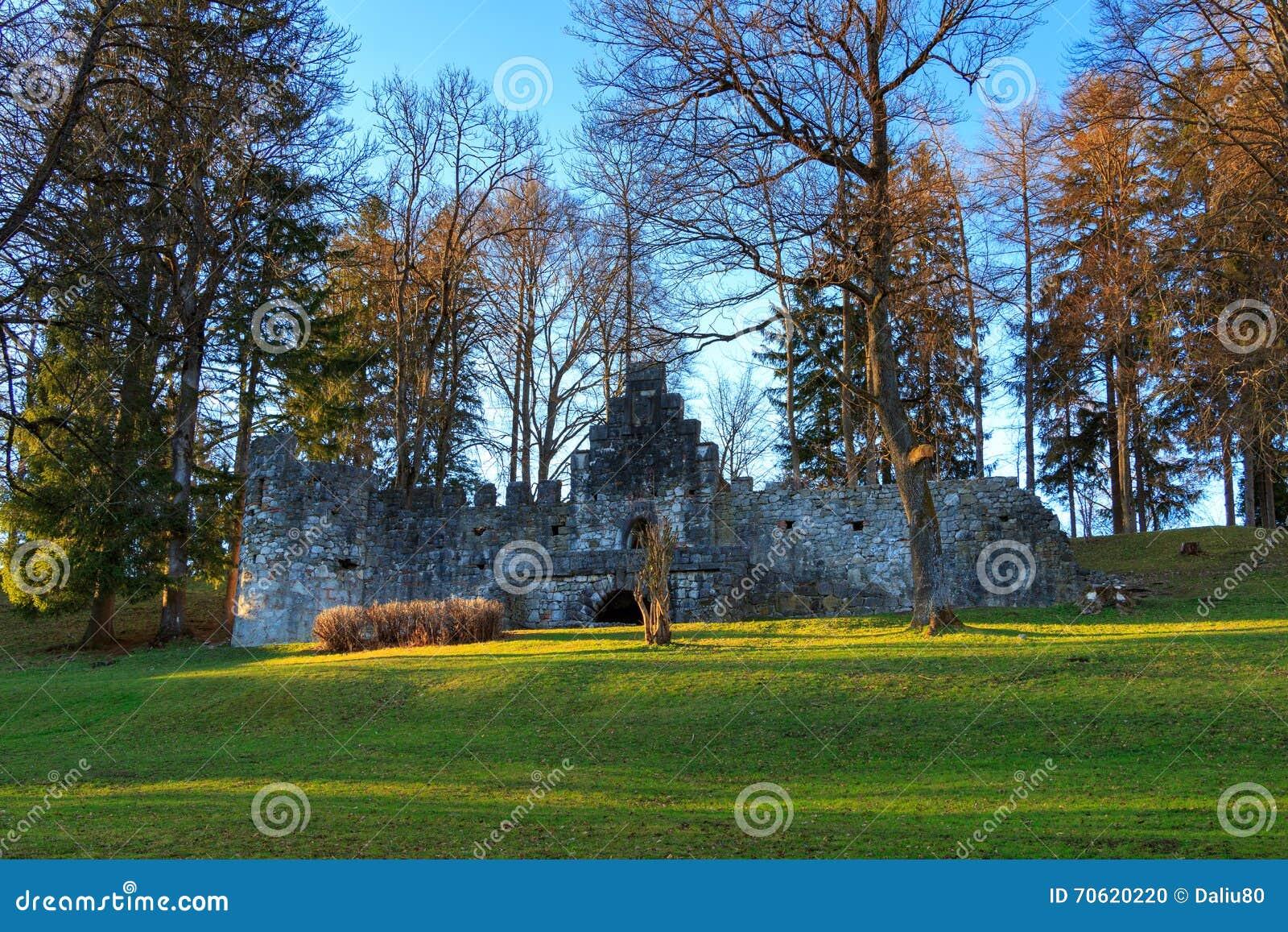 trees germany grass - photo #15