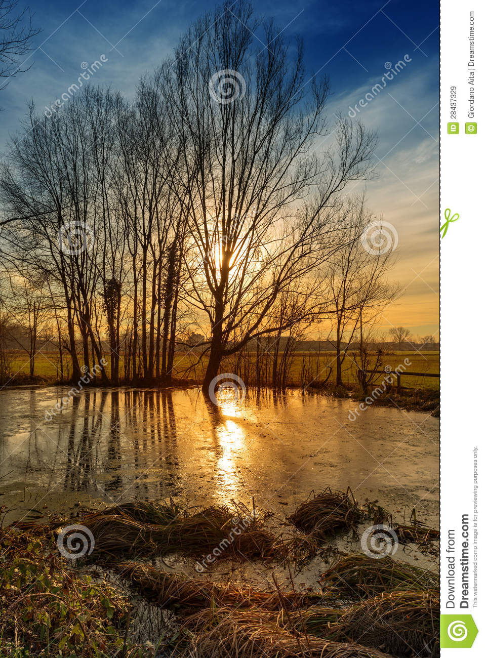 Sunset pond royalty free stock image for Pond dealers