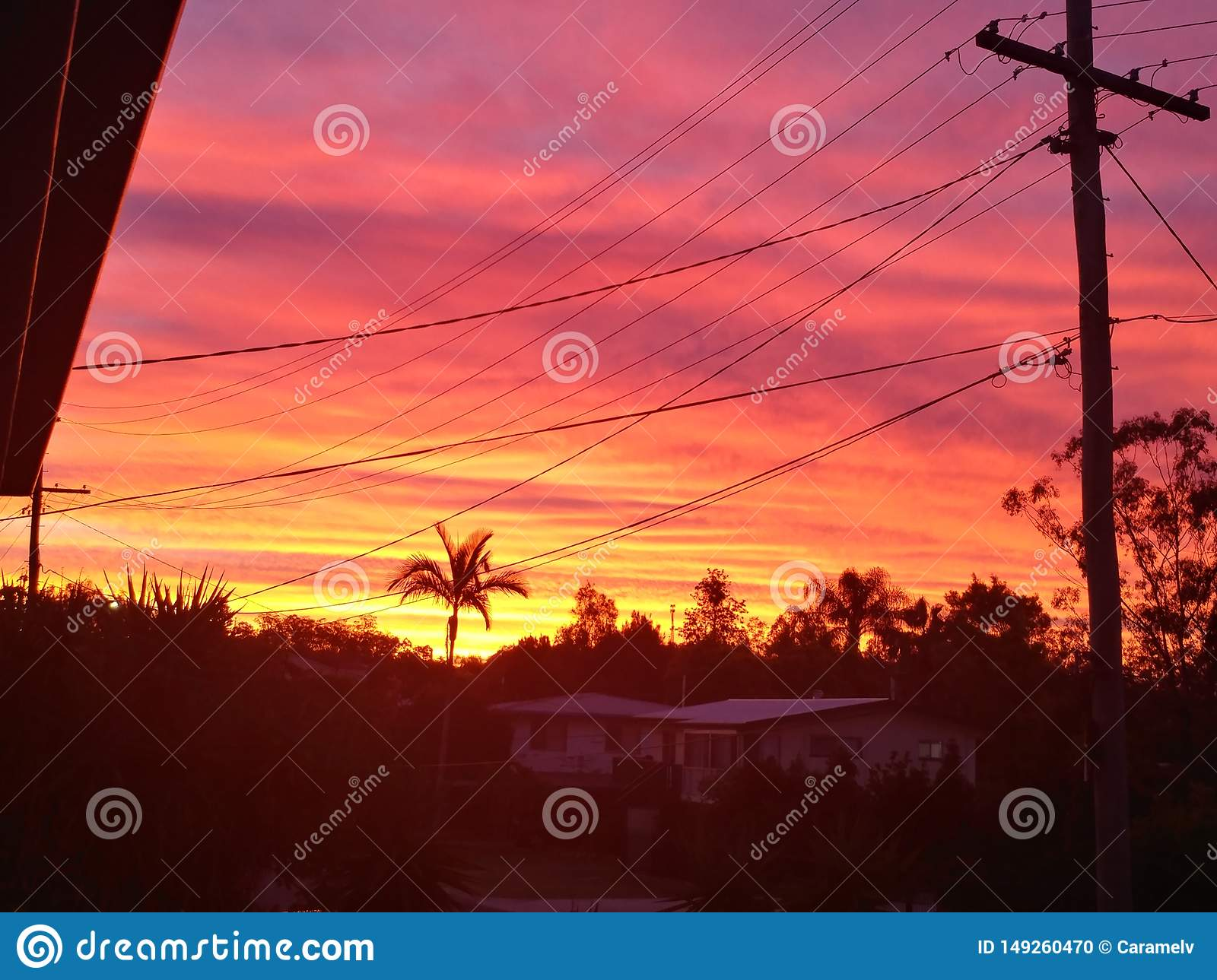 Sunset and powerlines stock photo. Image of pink, evening ...