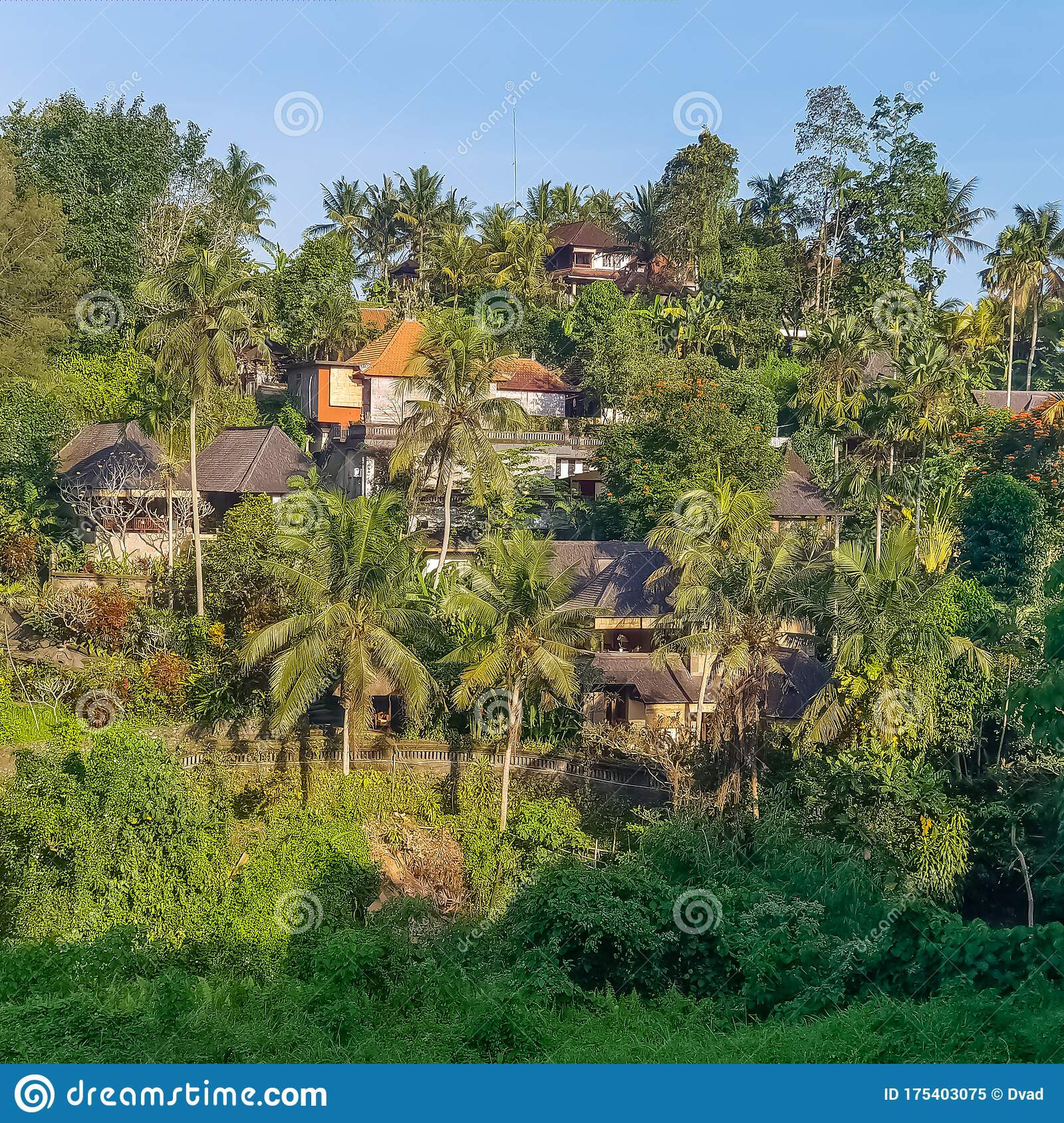Sunset View On Jungle And Villas At Ubud Bali Indonesia Stock Image Image Of Tourism Destination 175403075