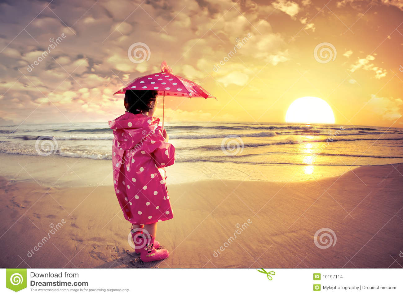 Download Sunset watch stock photo. Image of coat, sahel, beautiful - 10197114