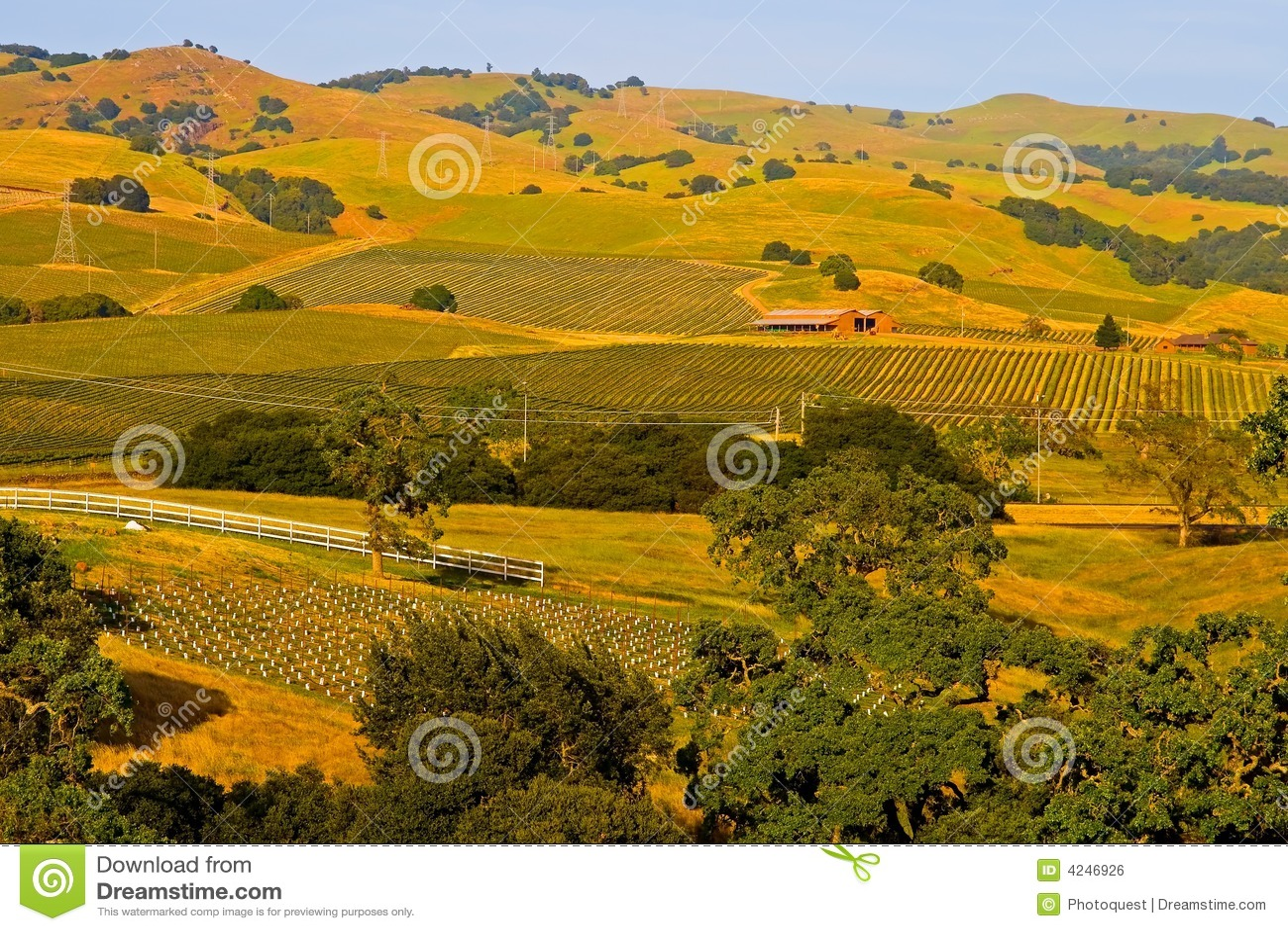 Sunset winnica napa valley