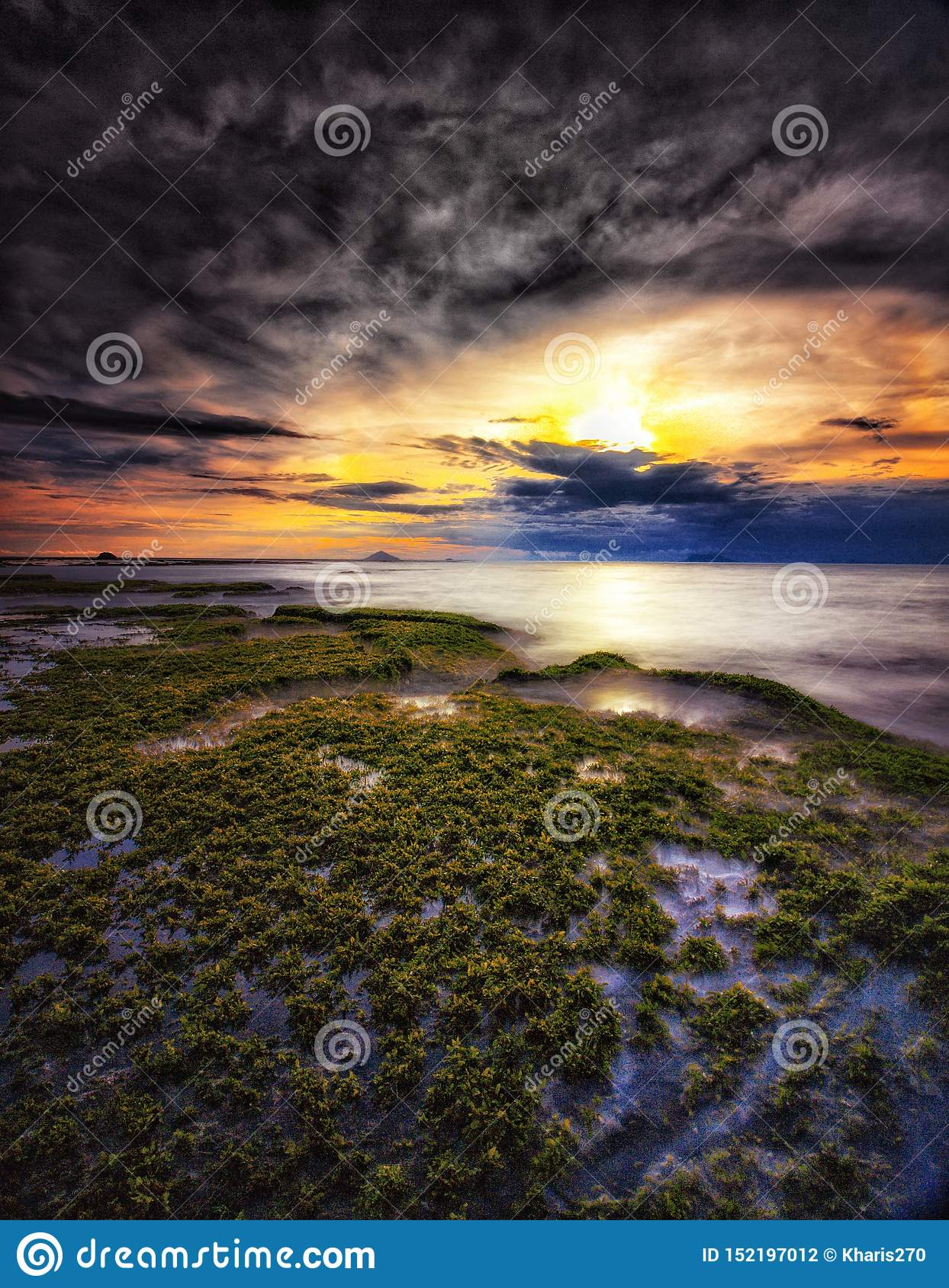 Sunsets sea ocean beach stock photo. Image of live, ecology ...