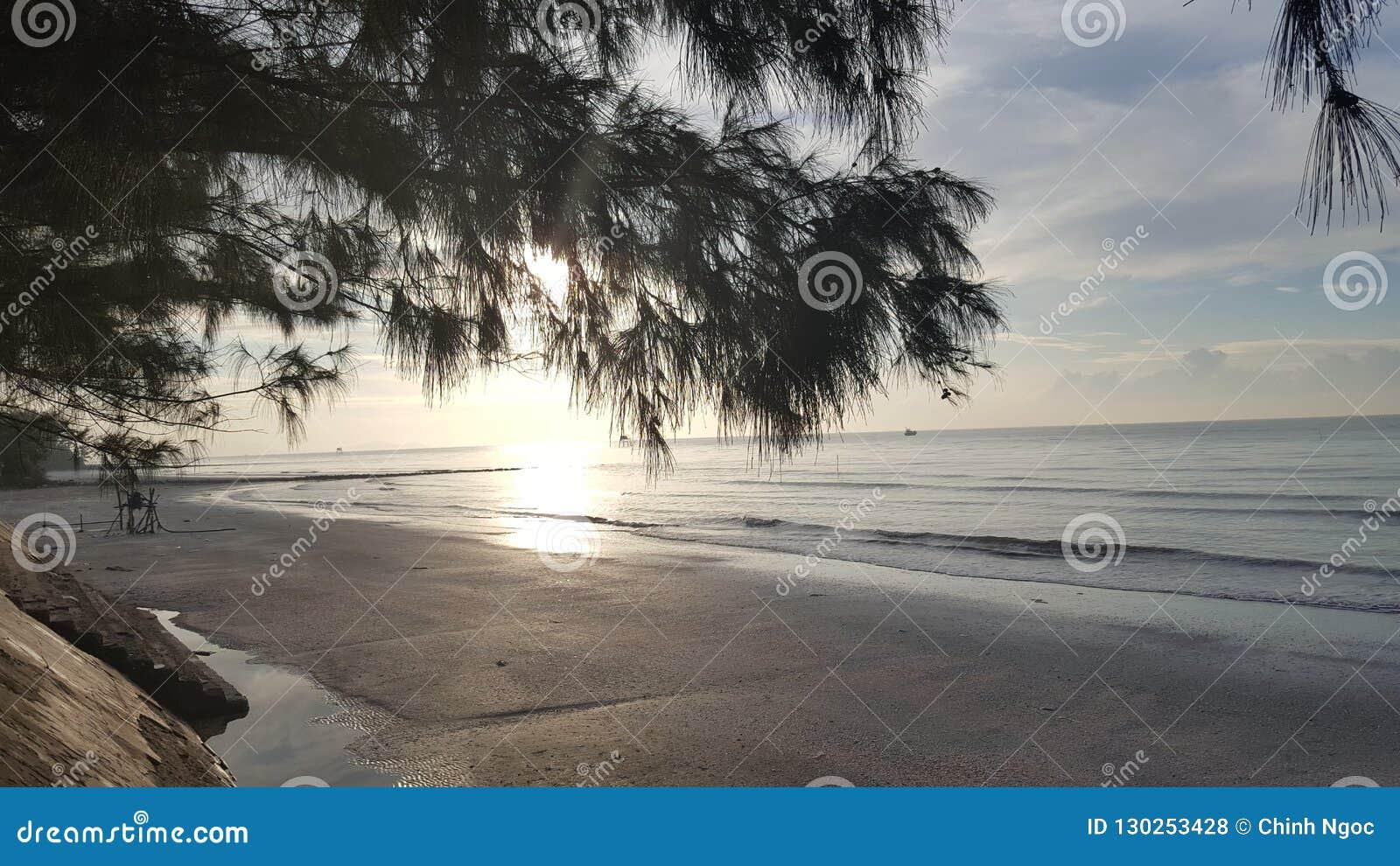 Sunshine at Can Gio Sea