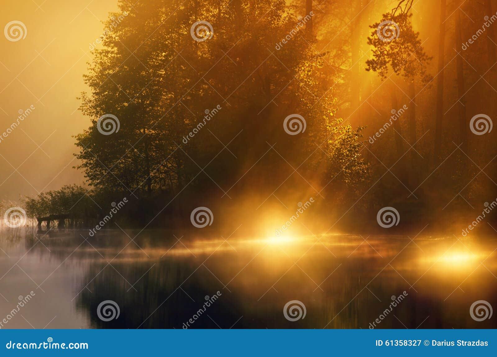 Sunshine in misty lake