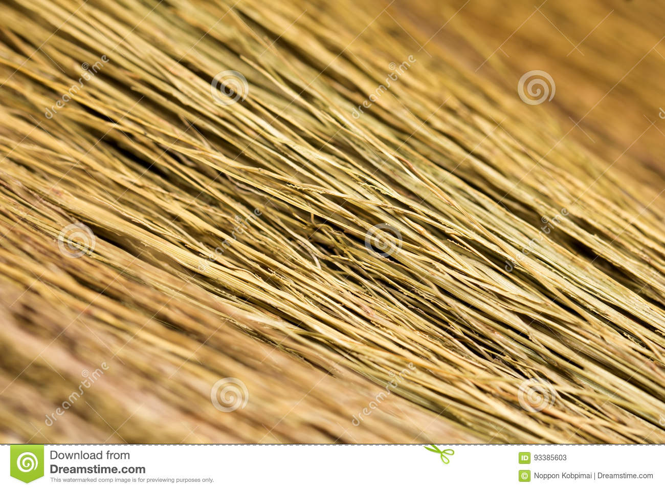 super macro broom weed texture wallpaper stock image image of