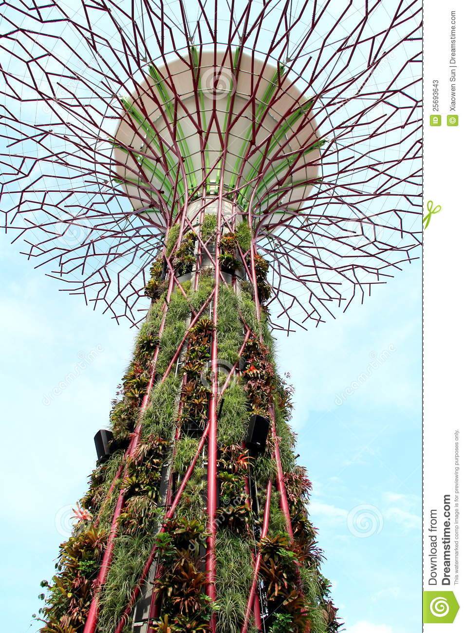 Super Tree Stands In Singapore Garden Stock Photos Image 25693643