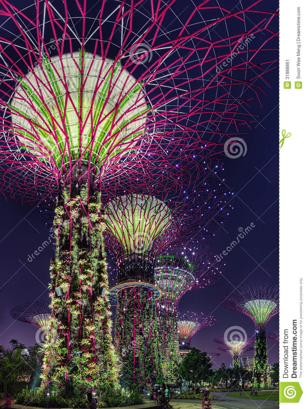 Garden By The Bay Night super trees night scene at singapore gardensthe bay stock