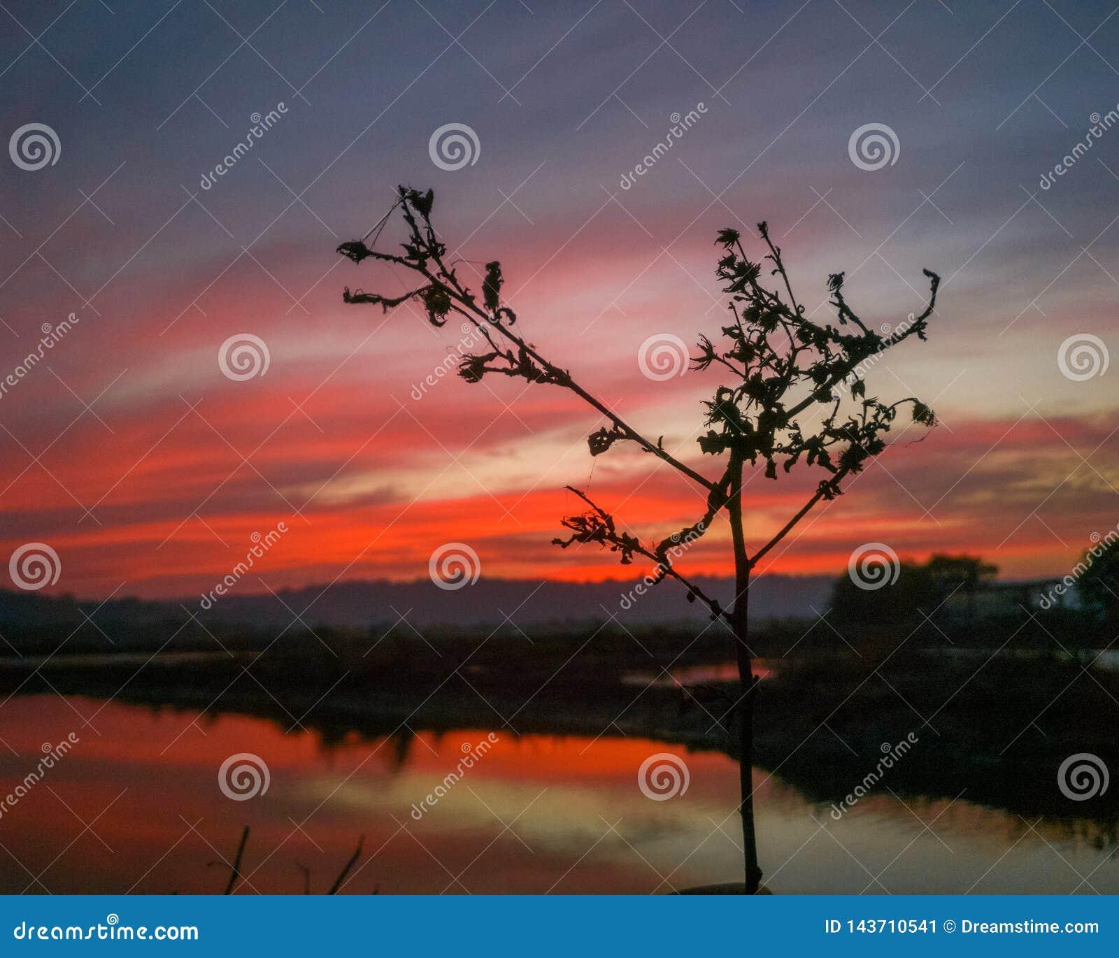 Superb röd solnedgång Avfyra i skyen