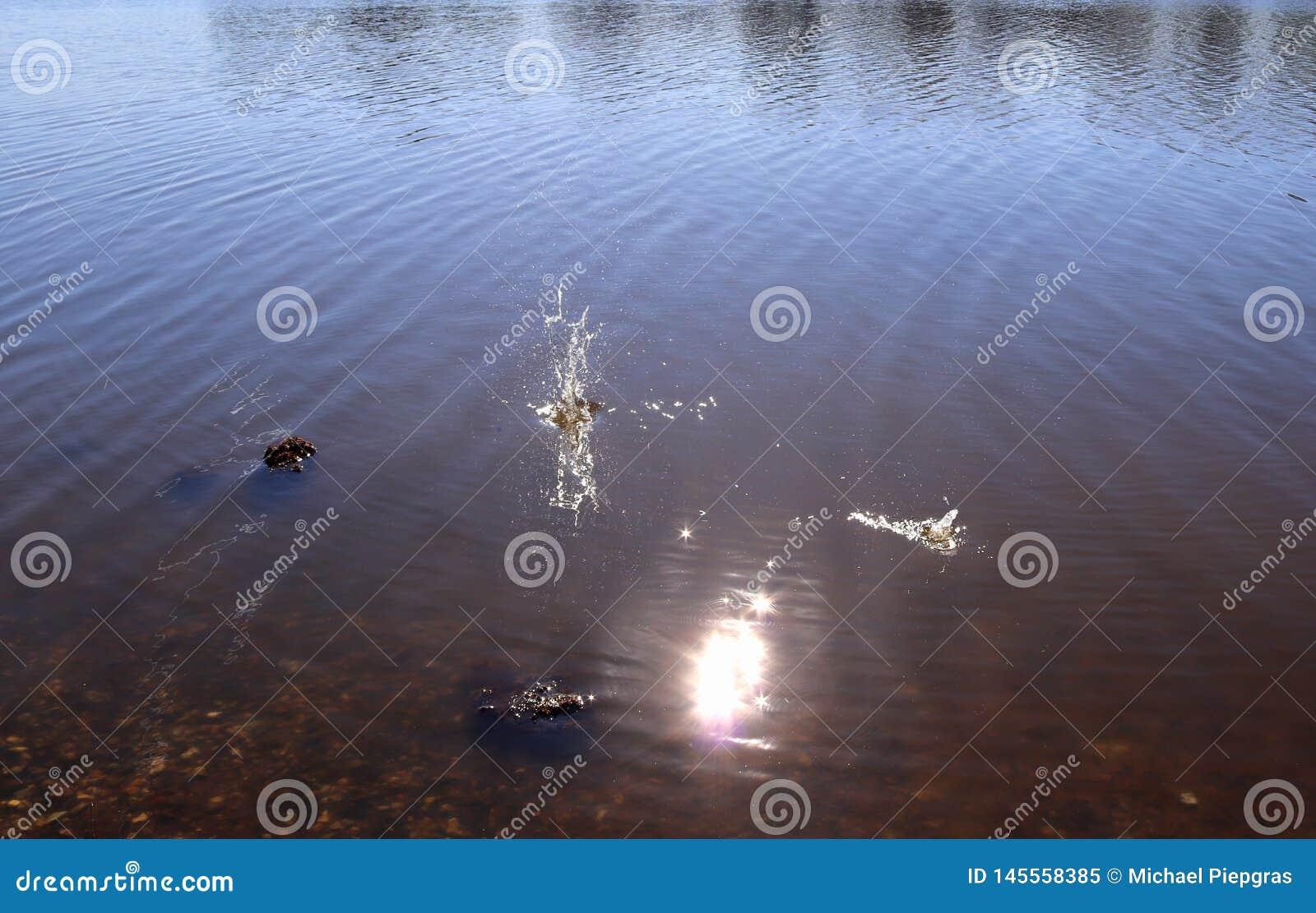 Superf?cie azul da ?gua do lago com ondinhas e artigo do espirro que cai nele ao refletir a luz solar