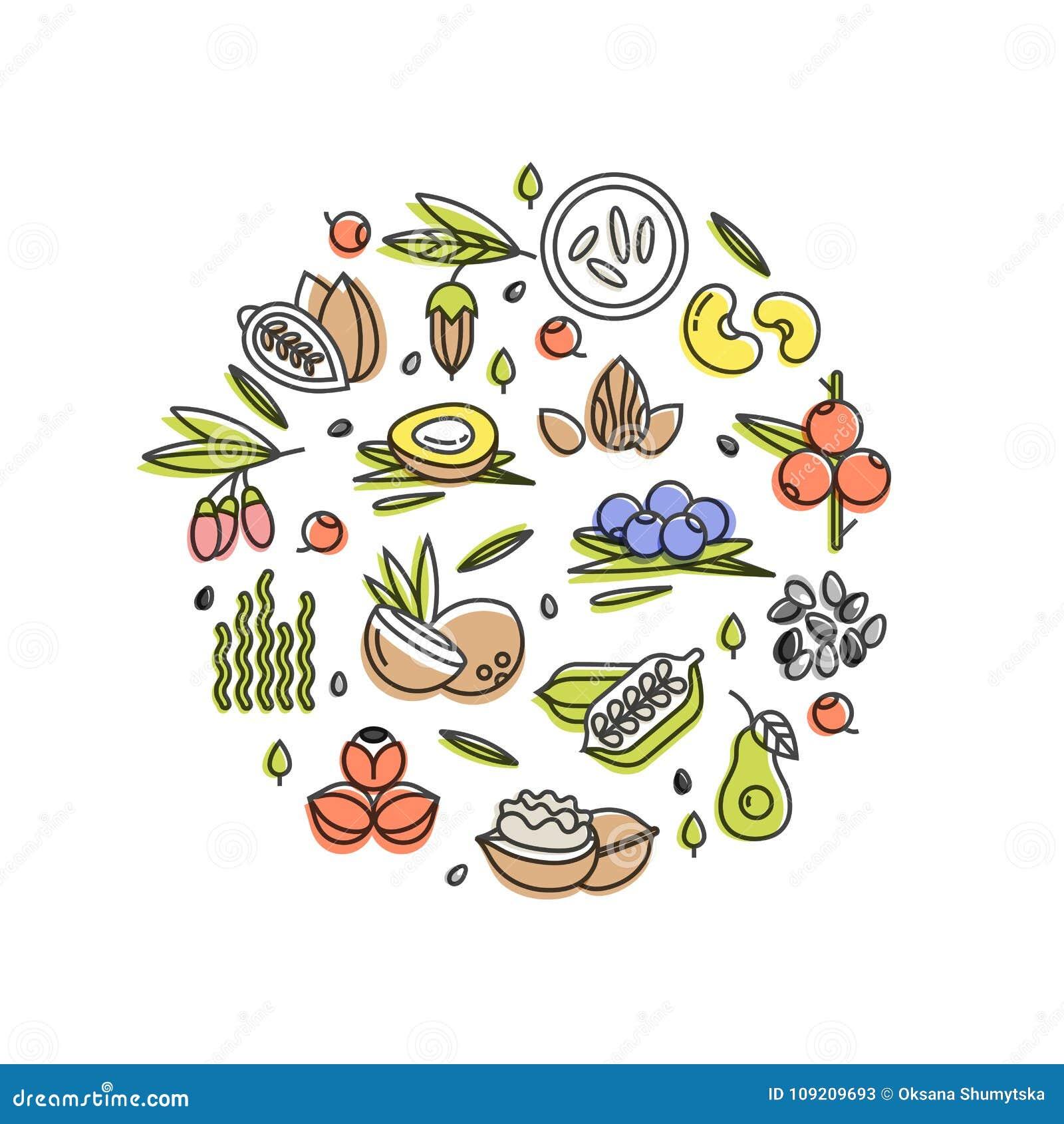 Superfood vectorconcept Bessen, noten, groentenvruchten en zaden Organische superfoods voor gezondheid Detox en weightloss