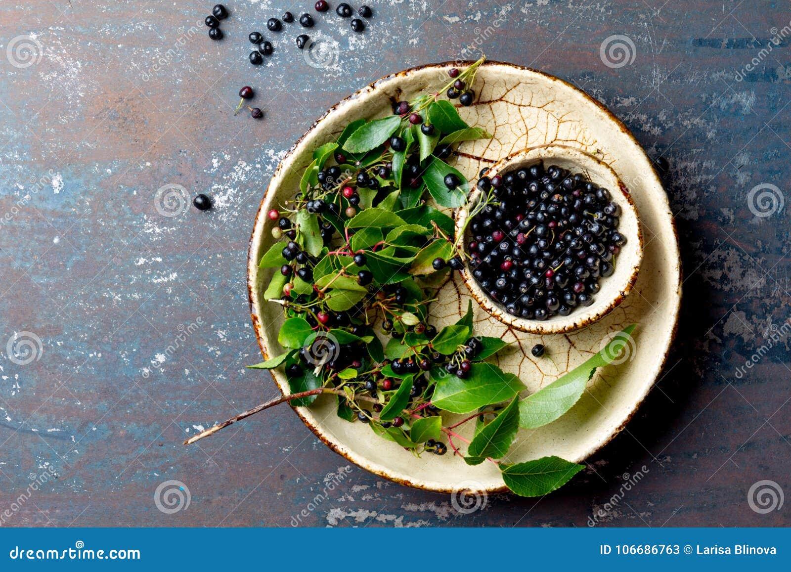 Superfoodmaqui BES Superfoodsmiddel tegen oxidatie van Indische mapuche, Chili Kom van verse maquibes en van de maquibes boom