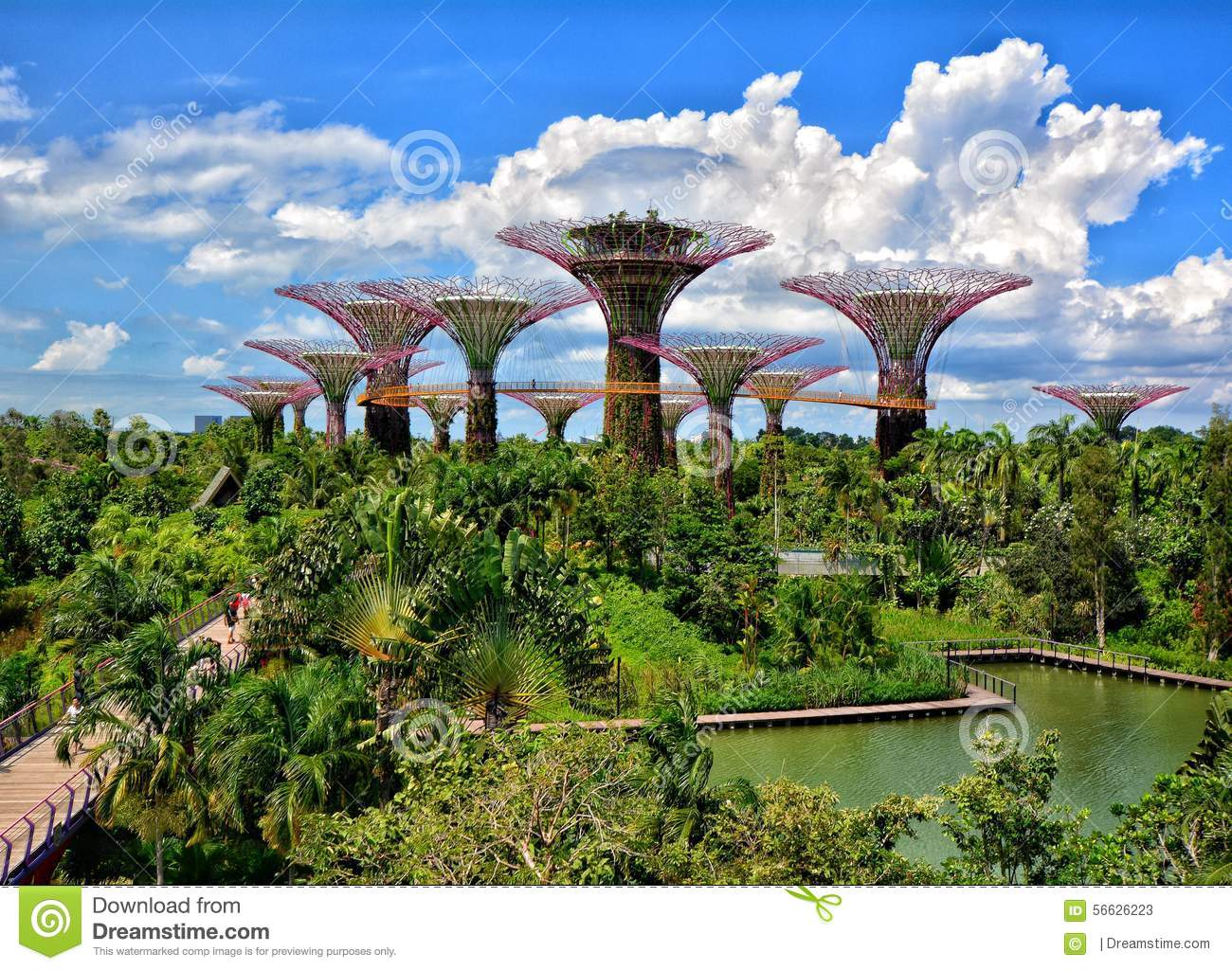 Supertree Grove Gardens By The Bay Singapore Stock Photo Image 56626223