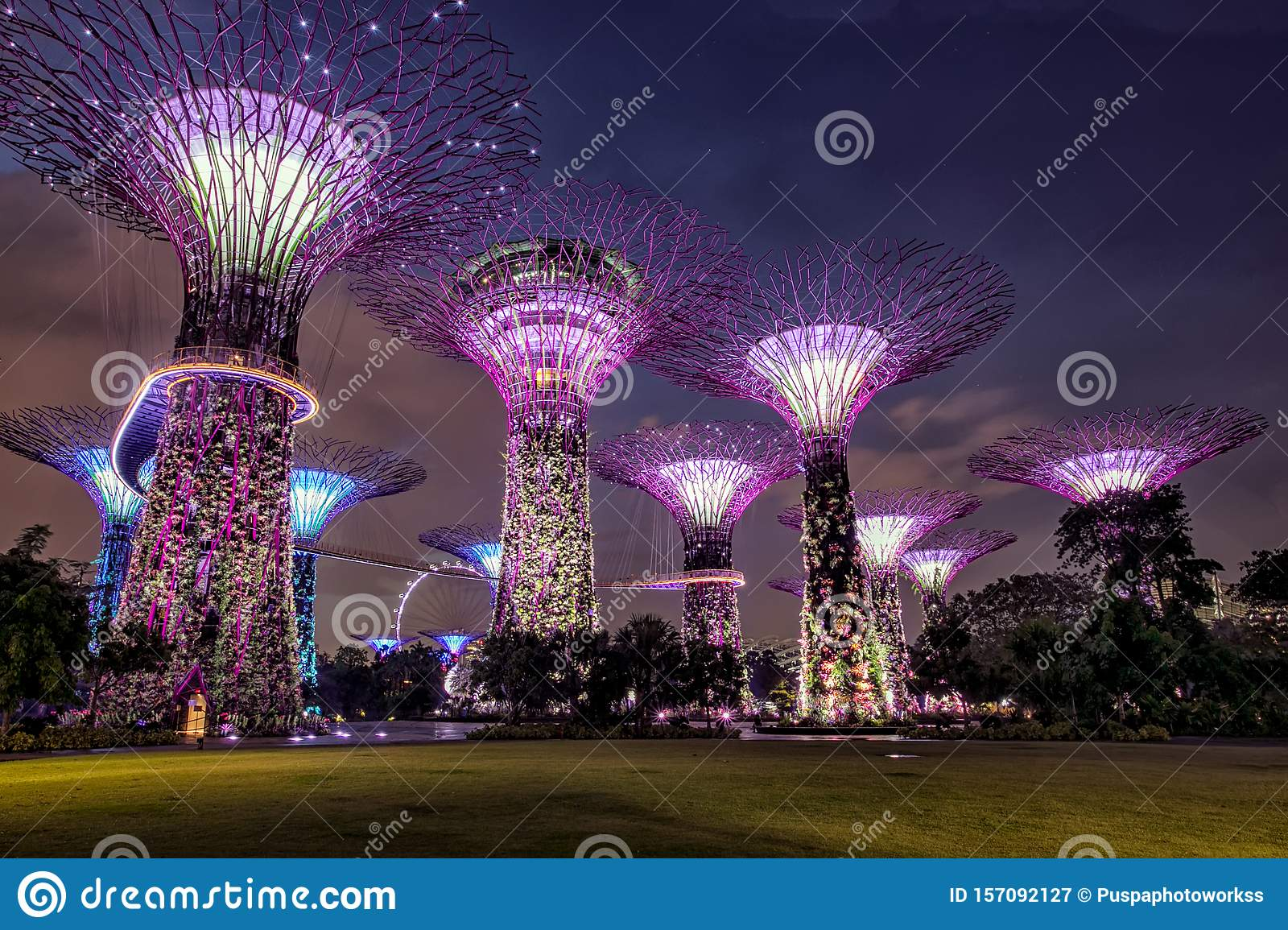 Amazing Supertree Grove With Beautiful Park at the Night.