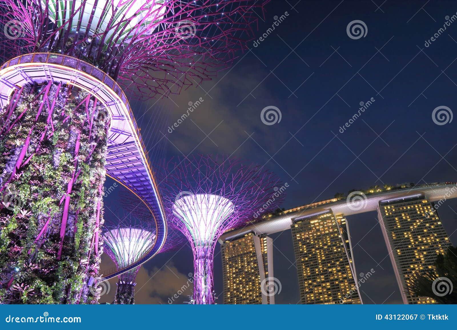 Supertreebosje en Marina Bay Sands Singapore