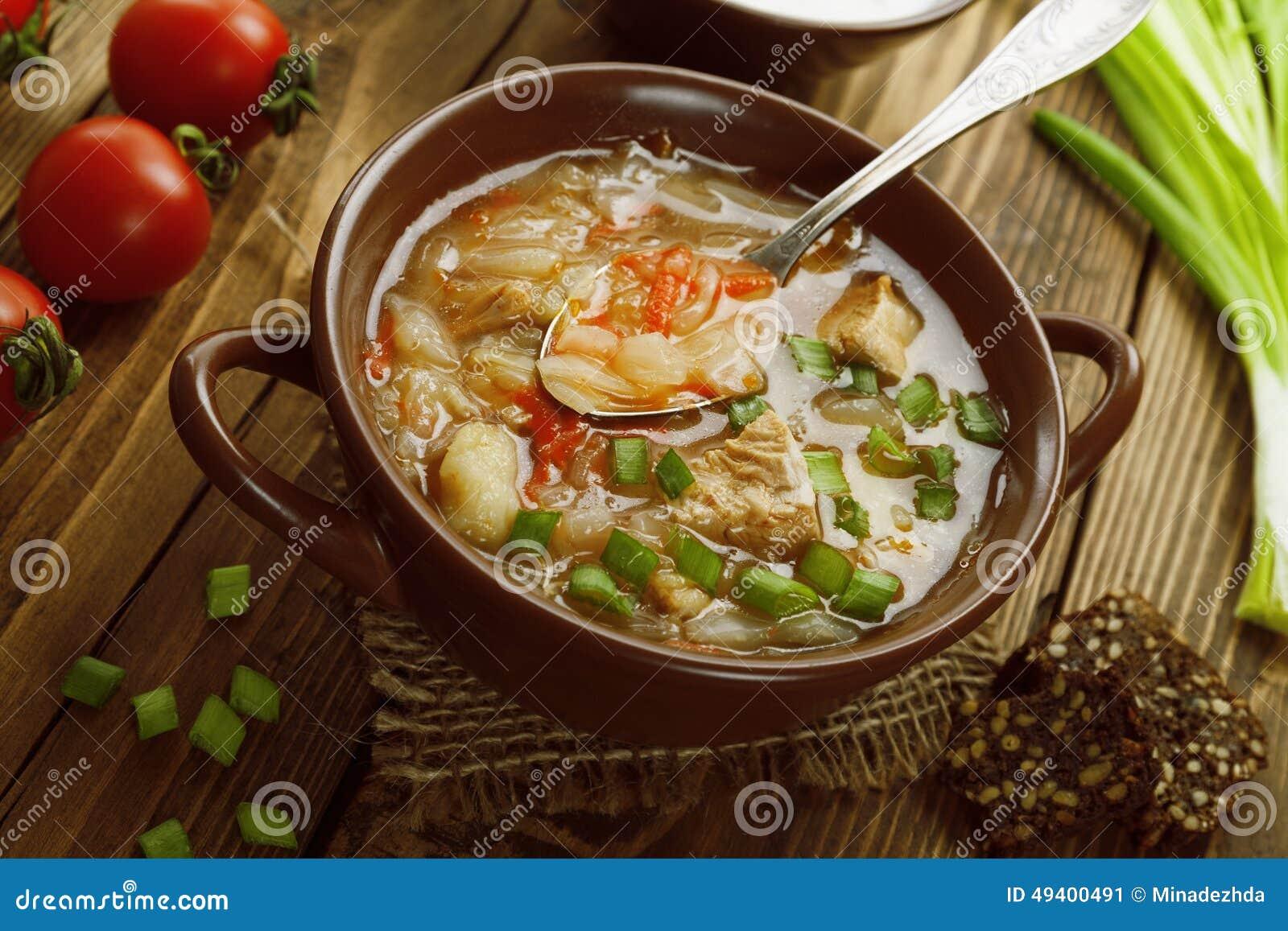 Download Suppe mit Kohl und Fleisch stockbild. Bild von kochen - 49400491