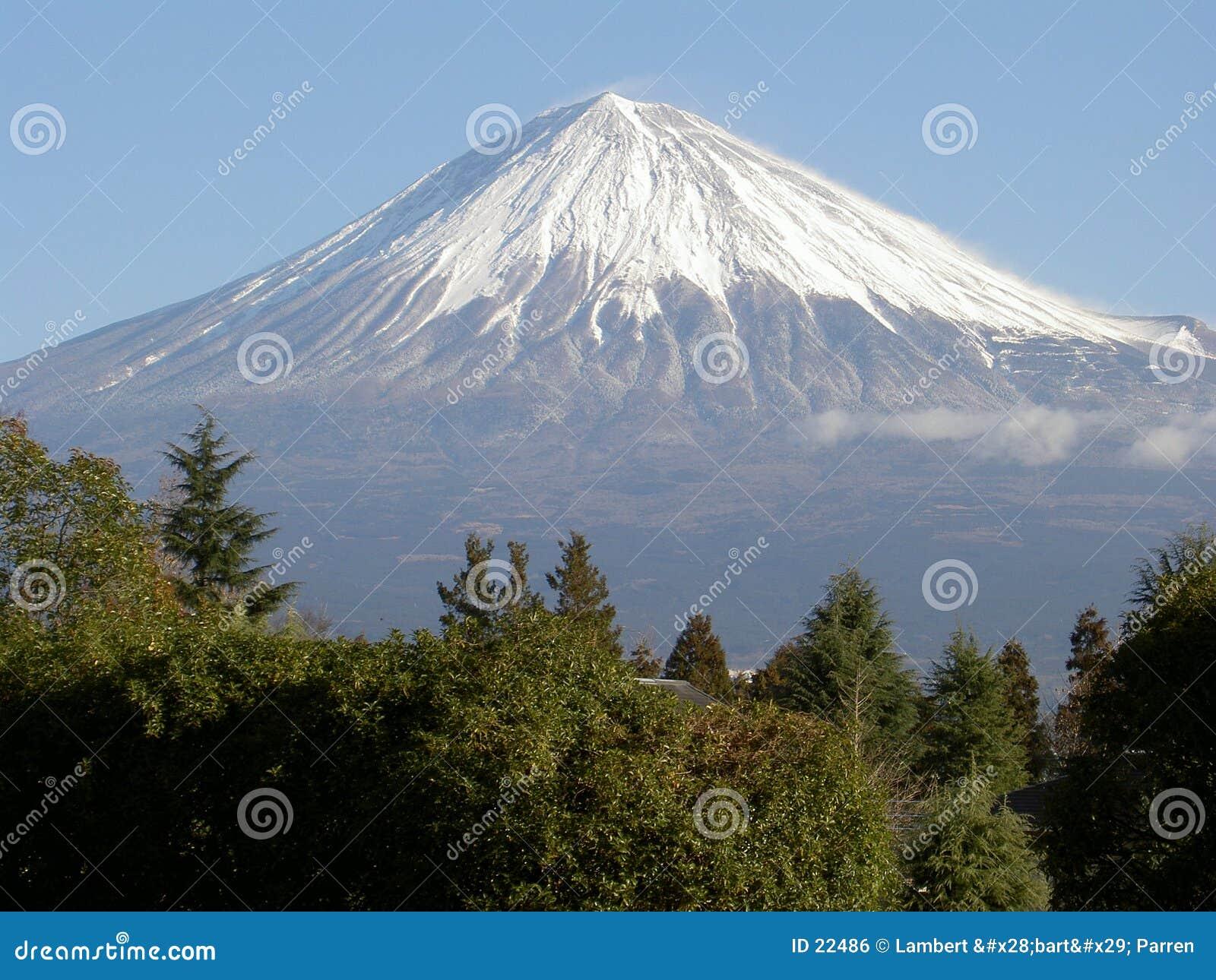 Support Fuji