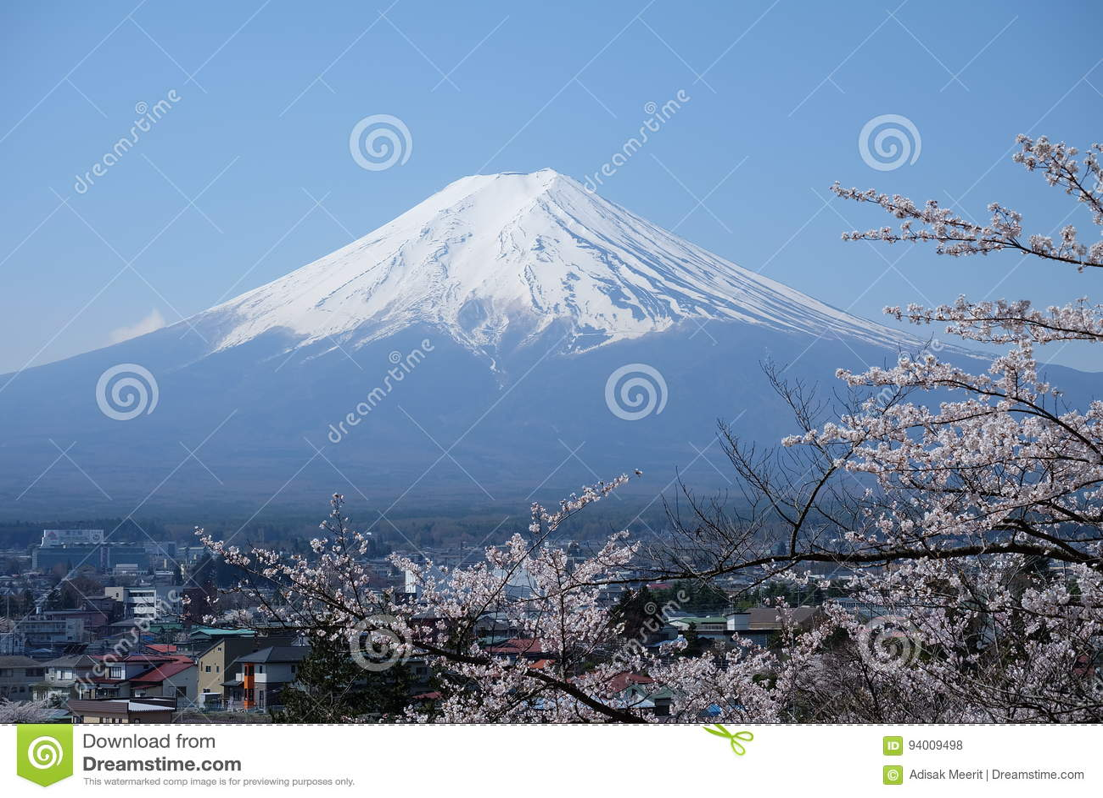Support Fuji, Fuji San