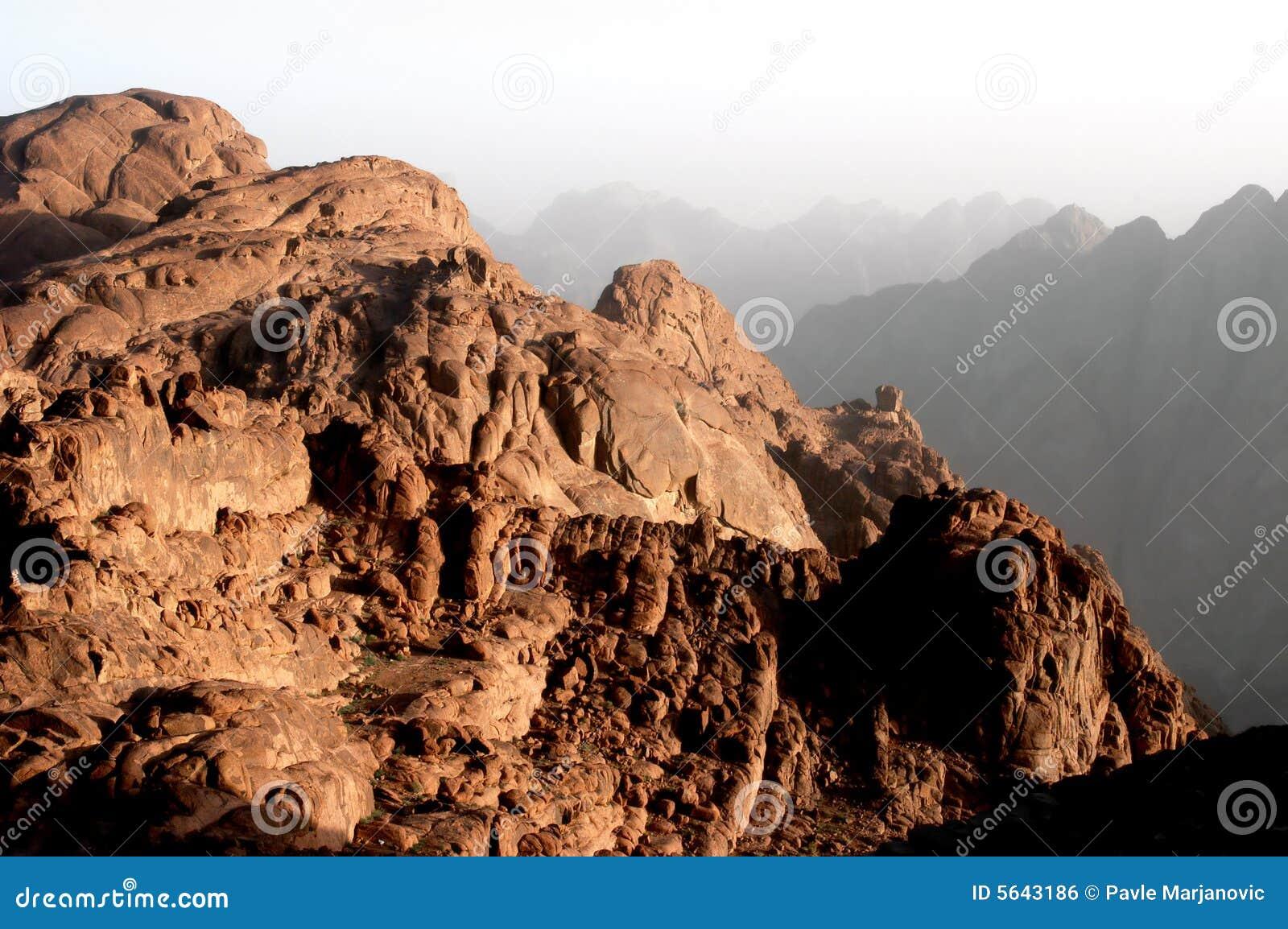 Support Moïse, Sinai