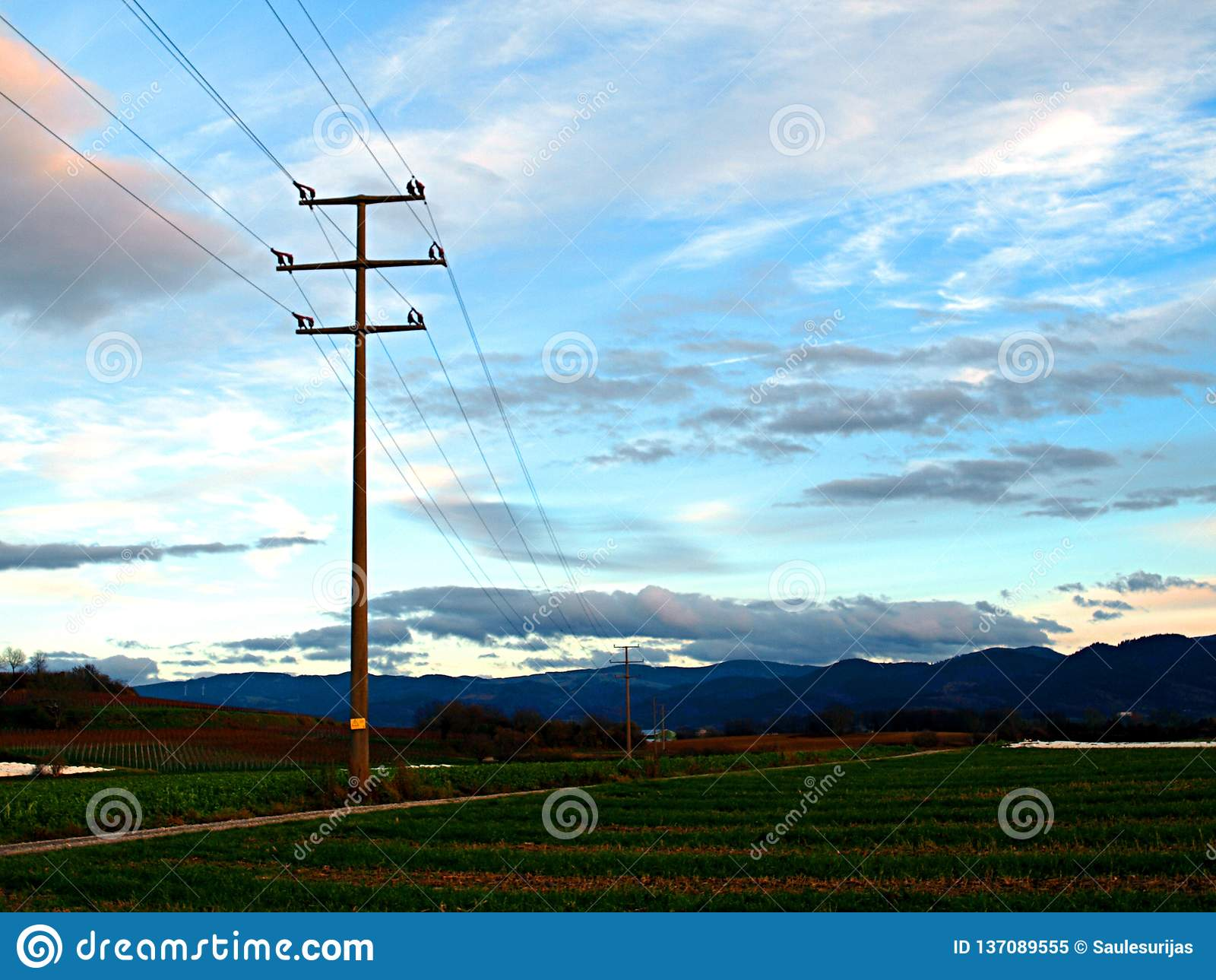 Support of power lines in the evening