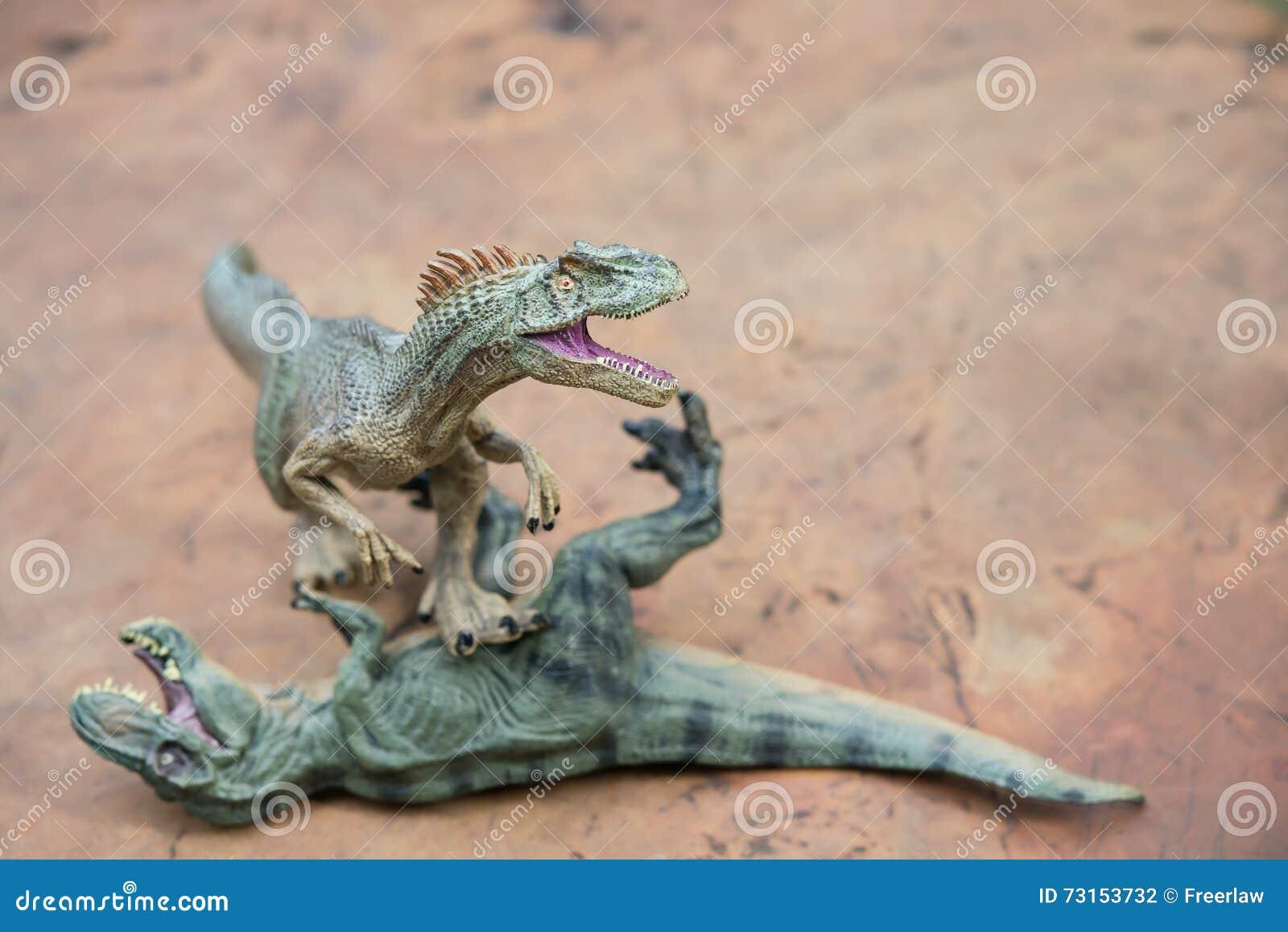 Supporti di allosauro e disposizioni di tirannosauro