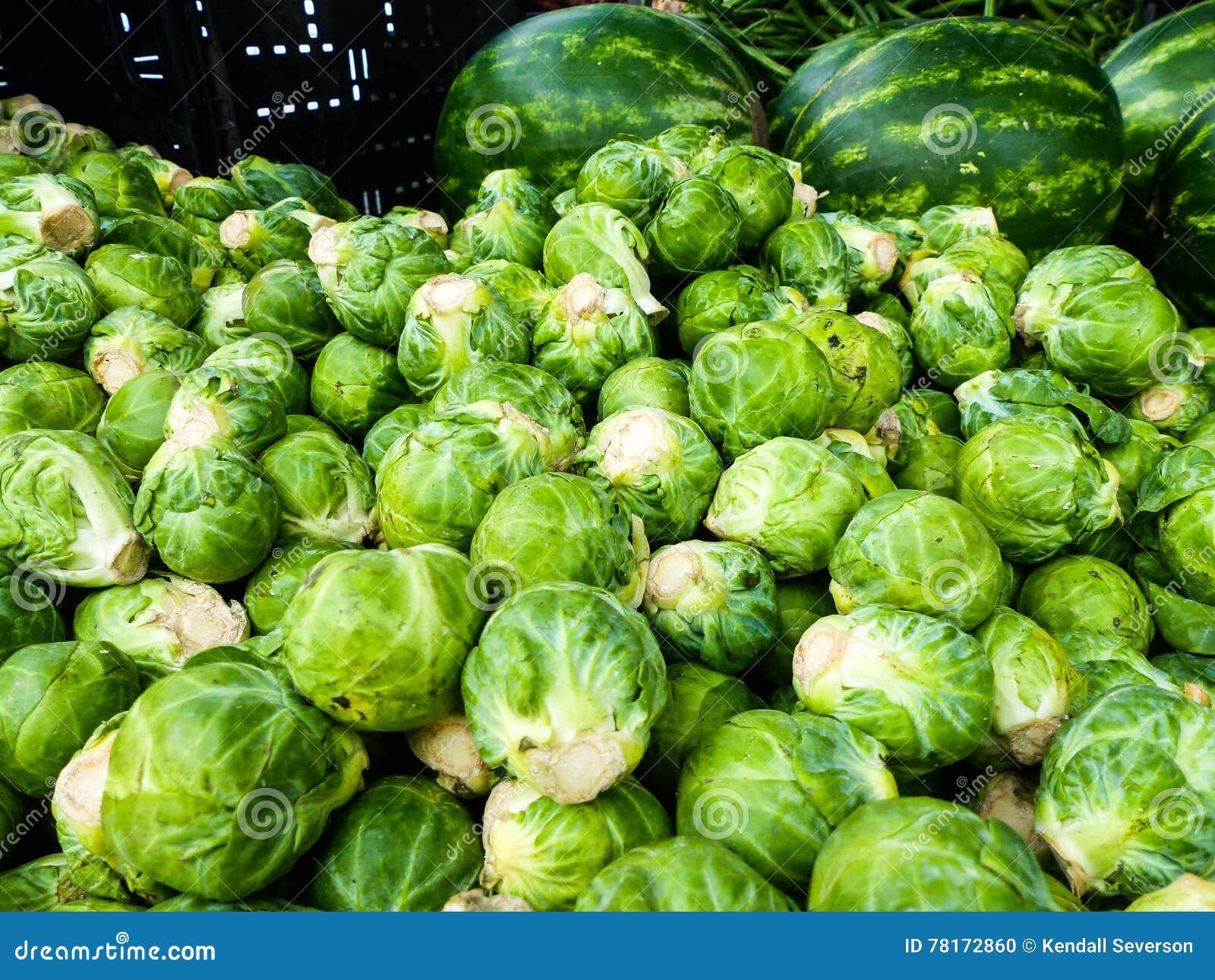 Supporto famoso del mercato degli agricoltori di domenica Hollywood che vende i cavoletti di Bruxelles