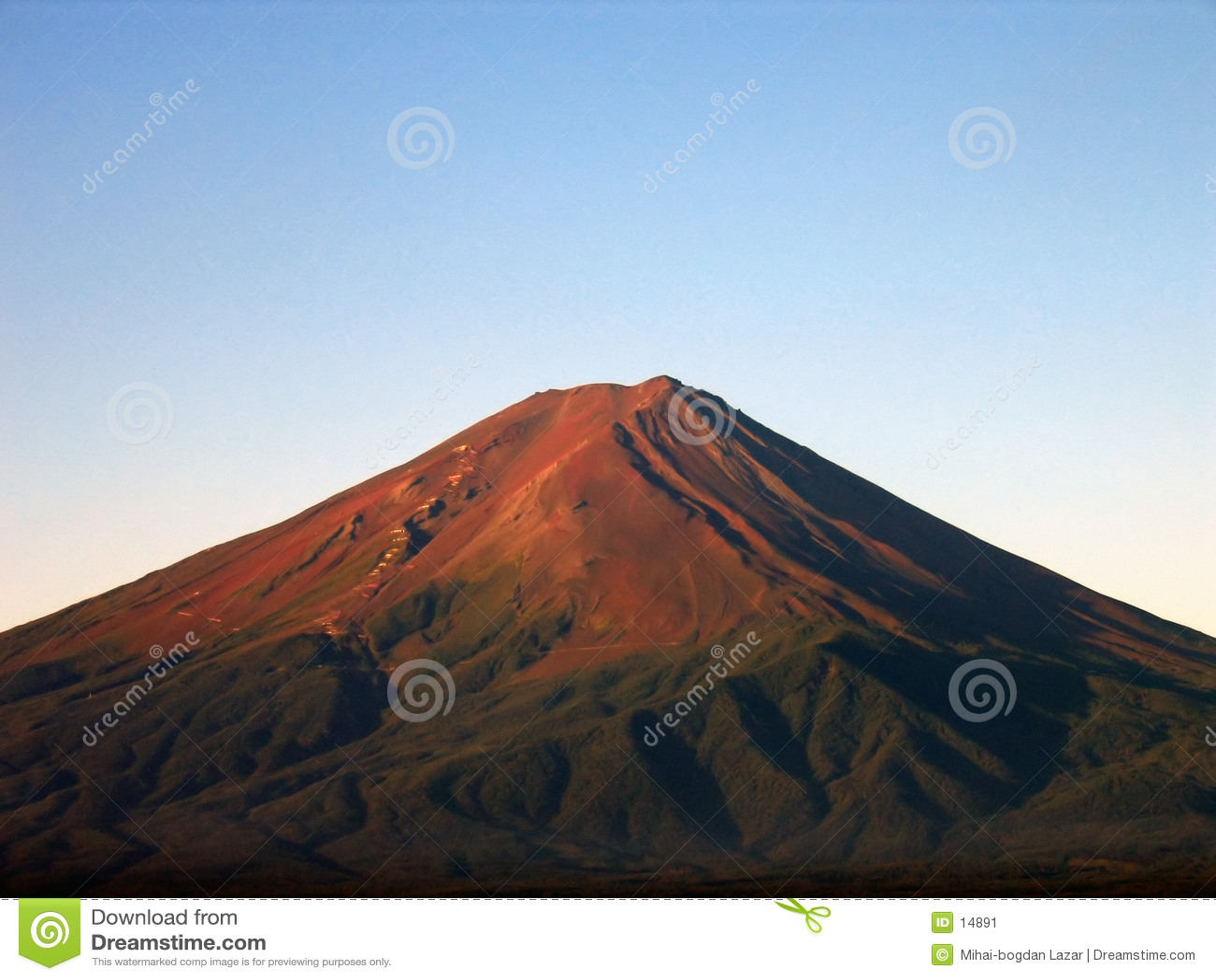 Supporto Fuji 2