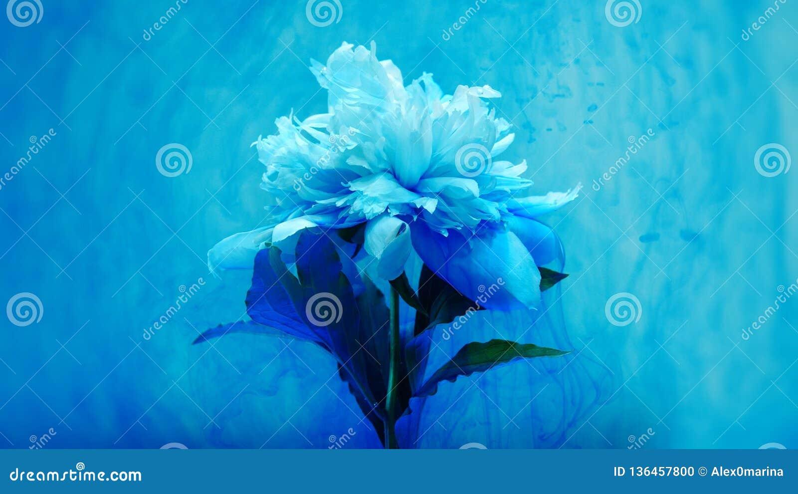 Sur de belles fleurs versant la peinture
