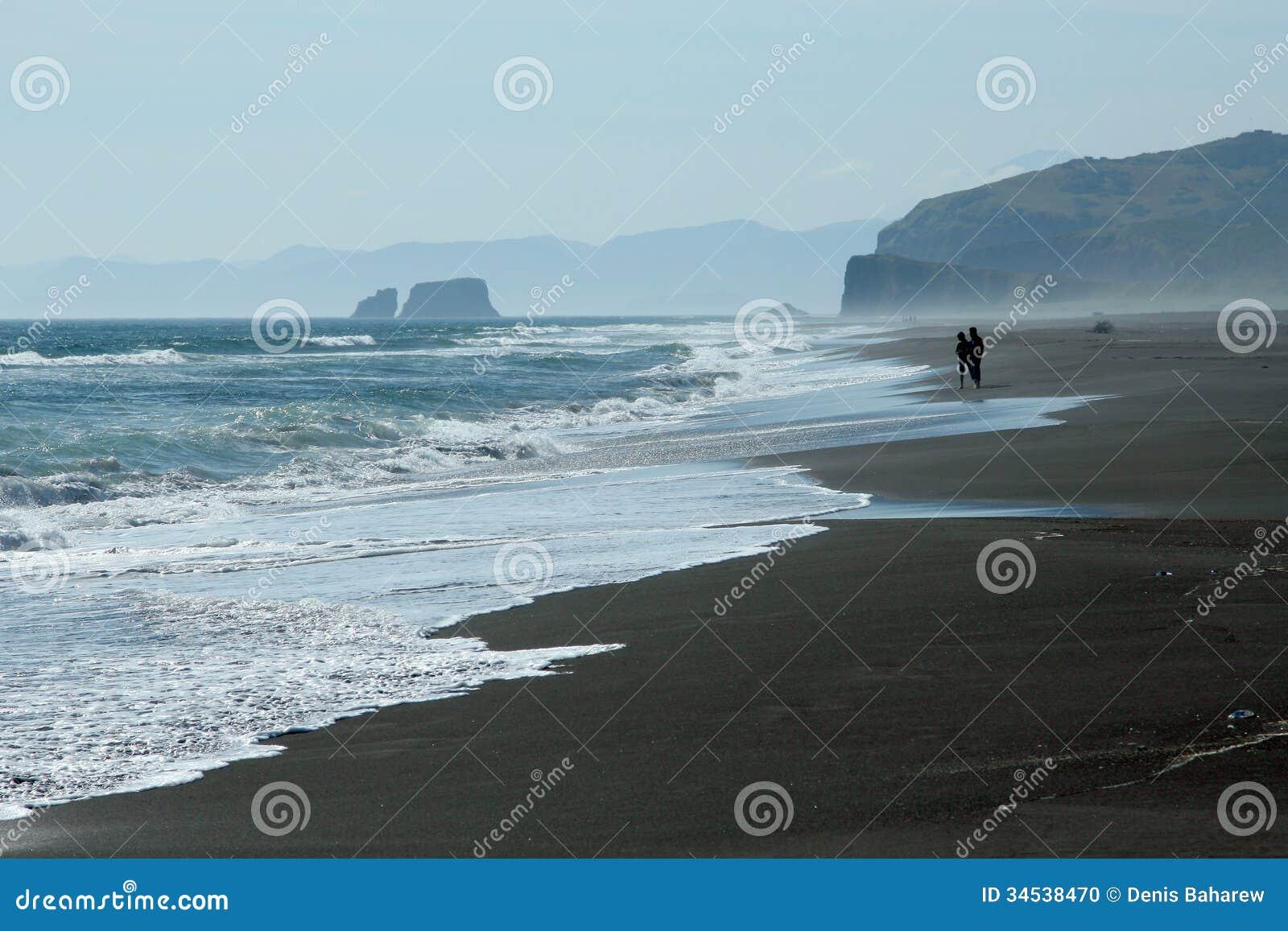 surfing mr petrovic essay