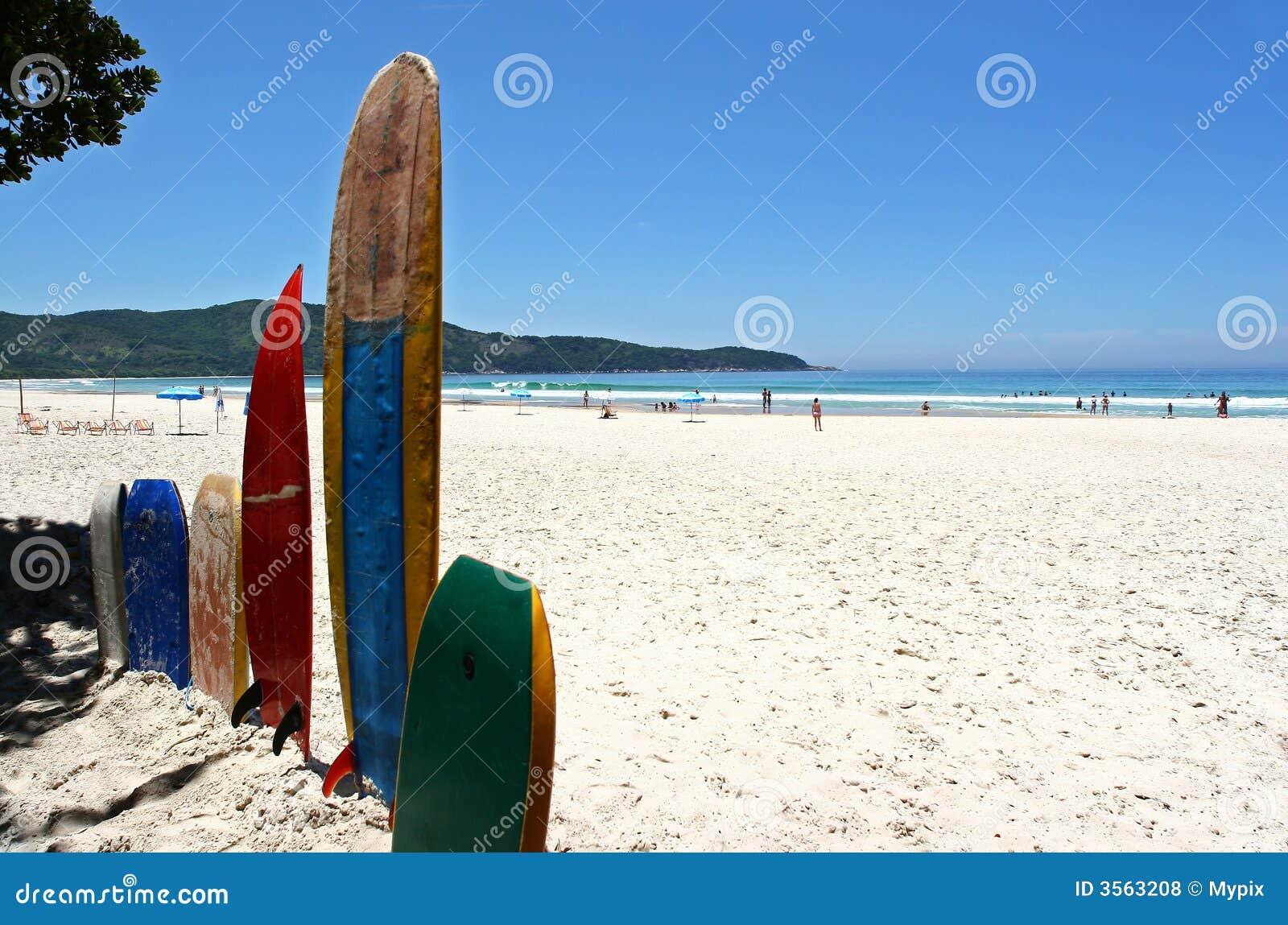 Surf sulla spiaggia bianca della sabbia