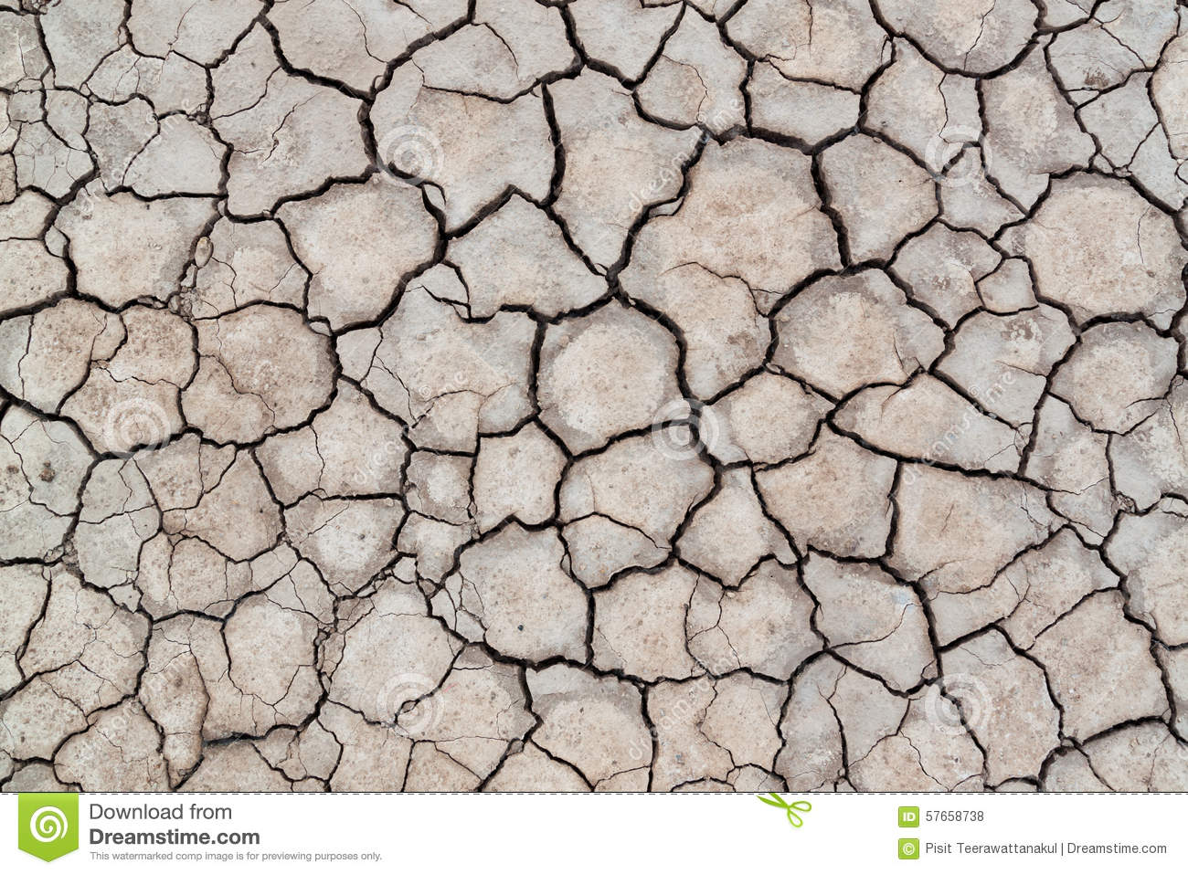 Surface of cracked earth for texture background , dried clay
