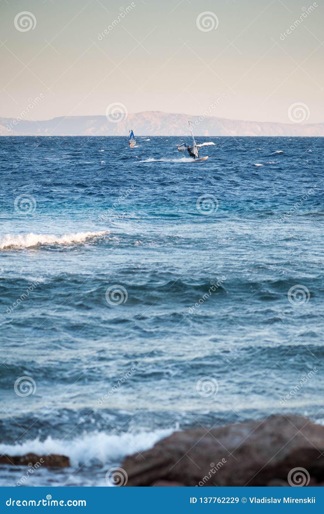 Surfareritter på Röda havet
