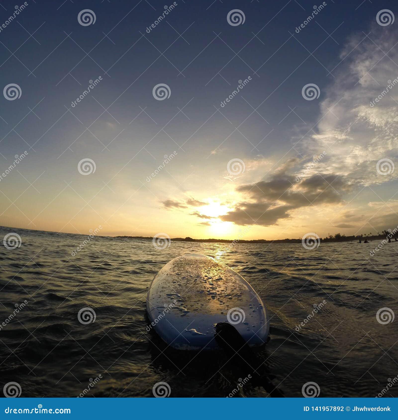 Surfboard w wodzie z pięknym wschód słońca